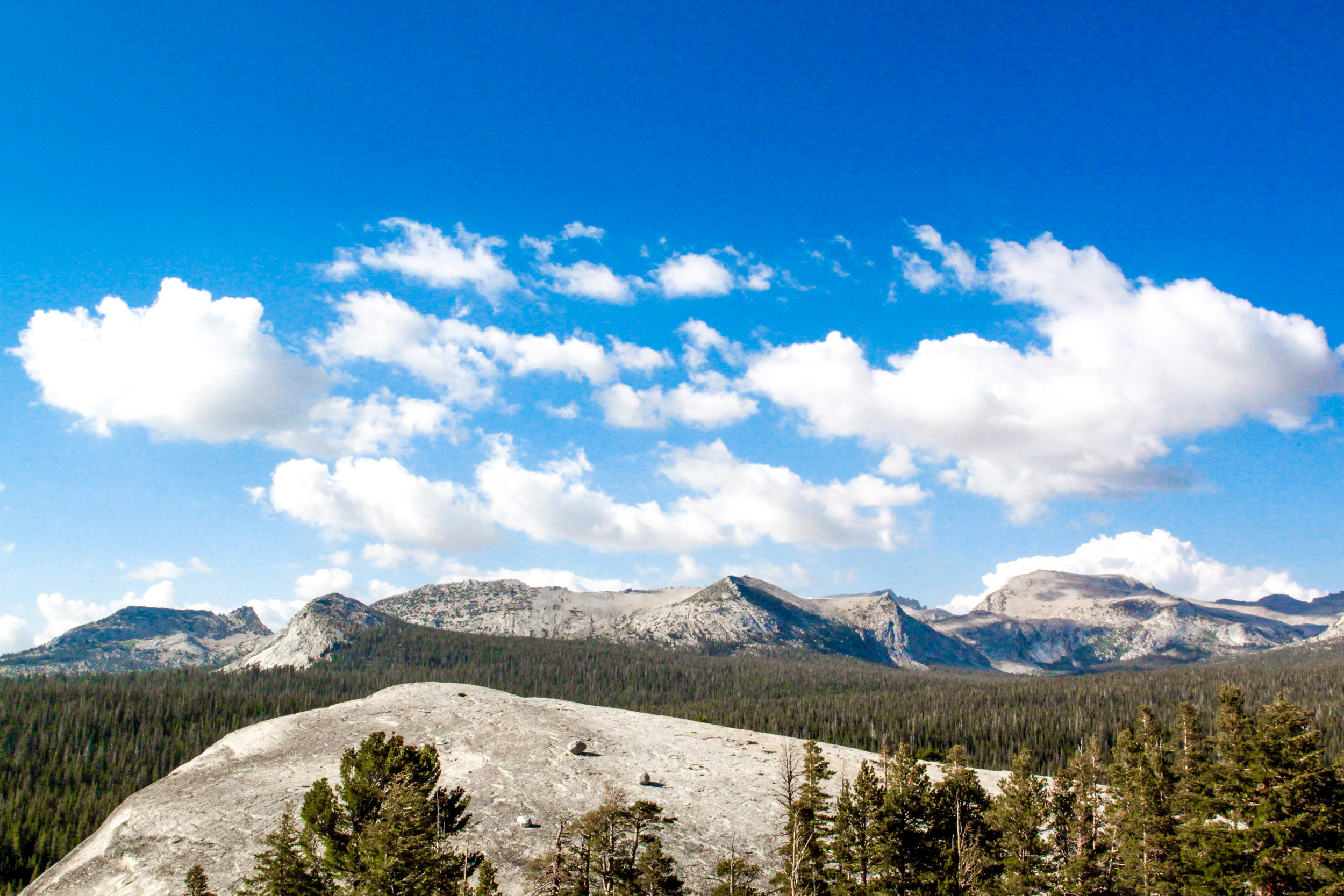 View of Tuolumne Meadows from Lembert Dome, 2012