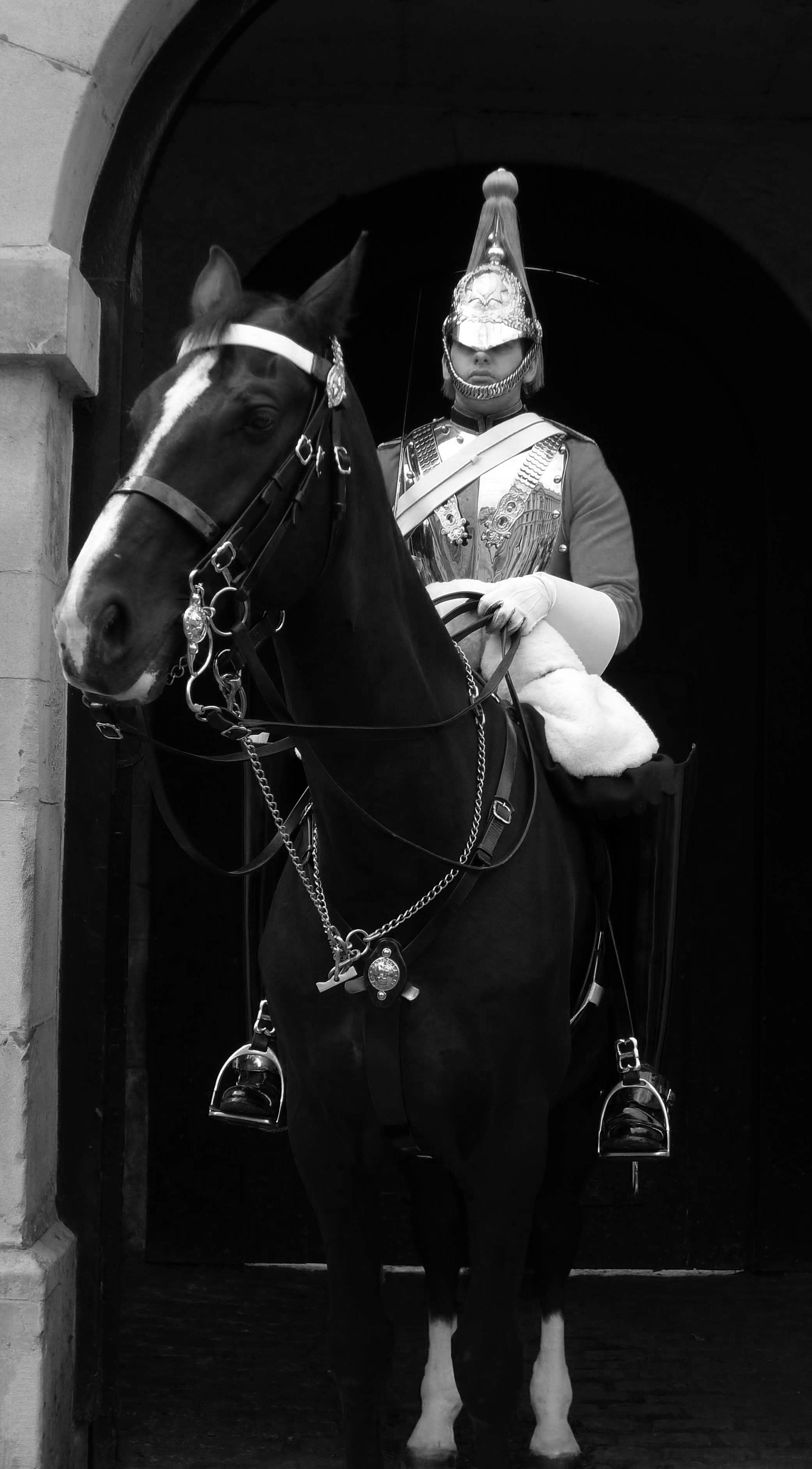 Household cavalry.jpg