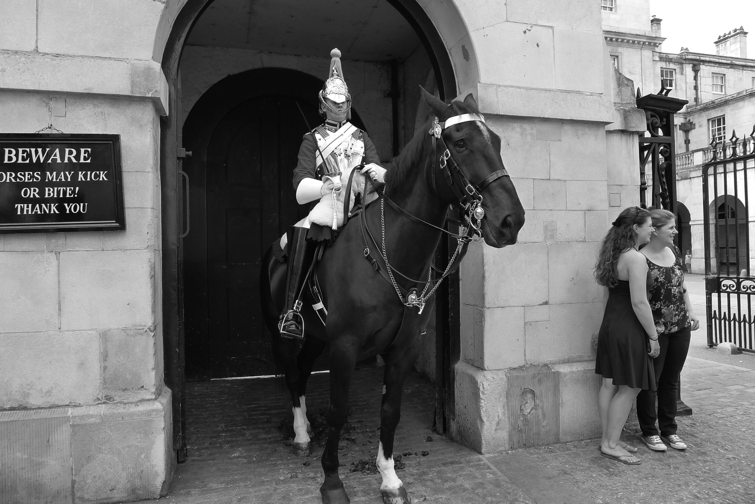 WHITEHALL HORSE B-W.jpg