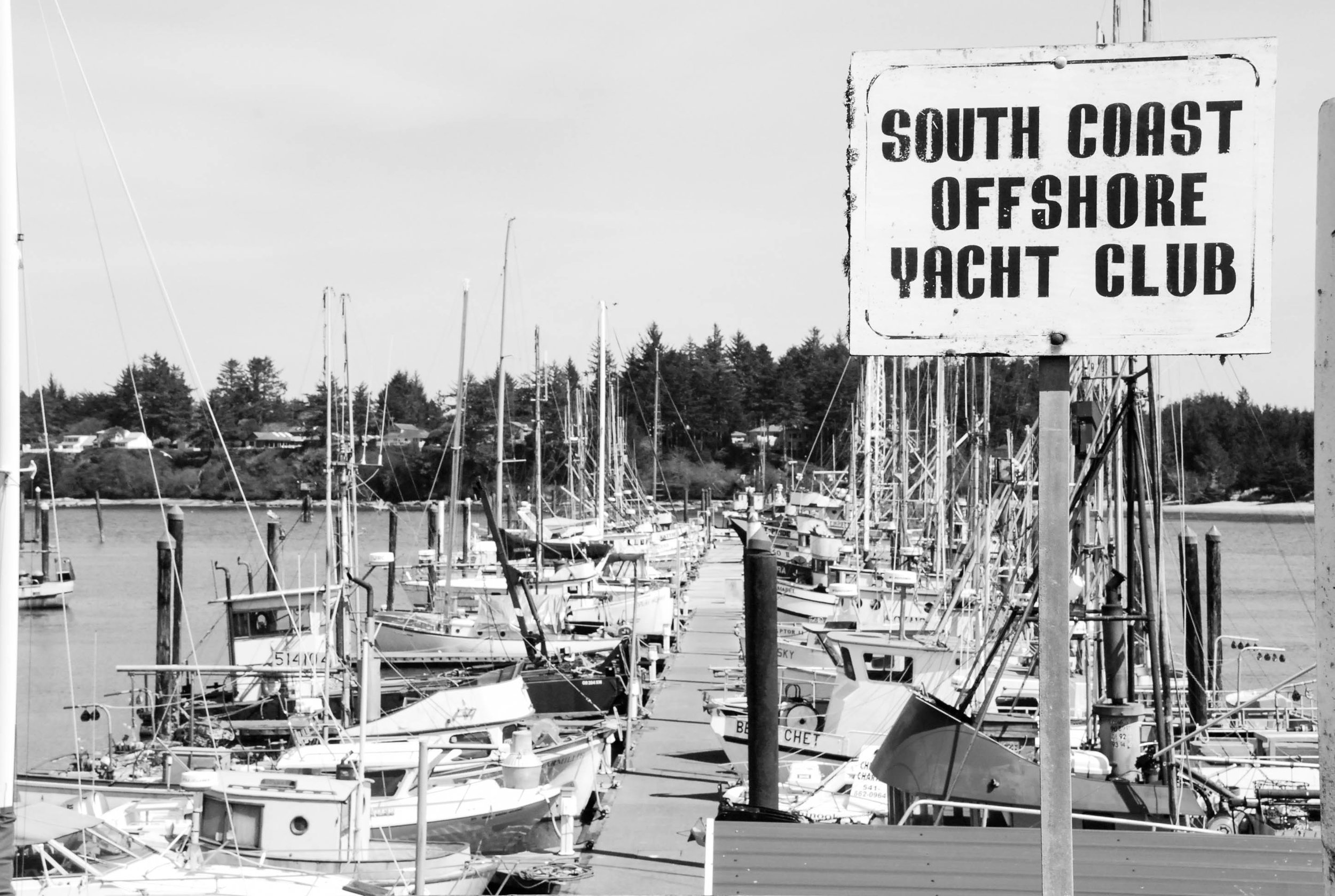 South Coast Offshore Yacht Club-0293.jpg