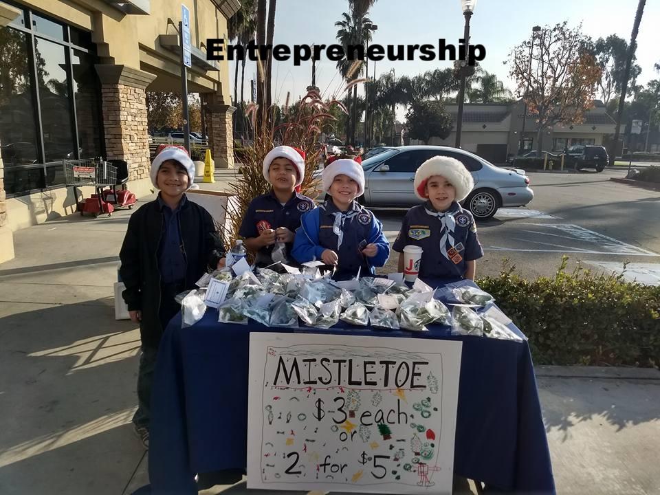 Mistletoe sale 2017