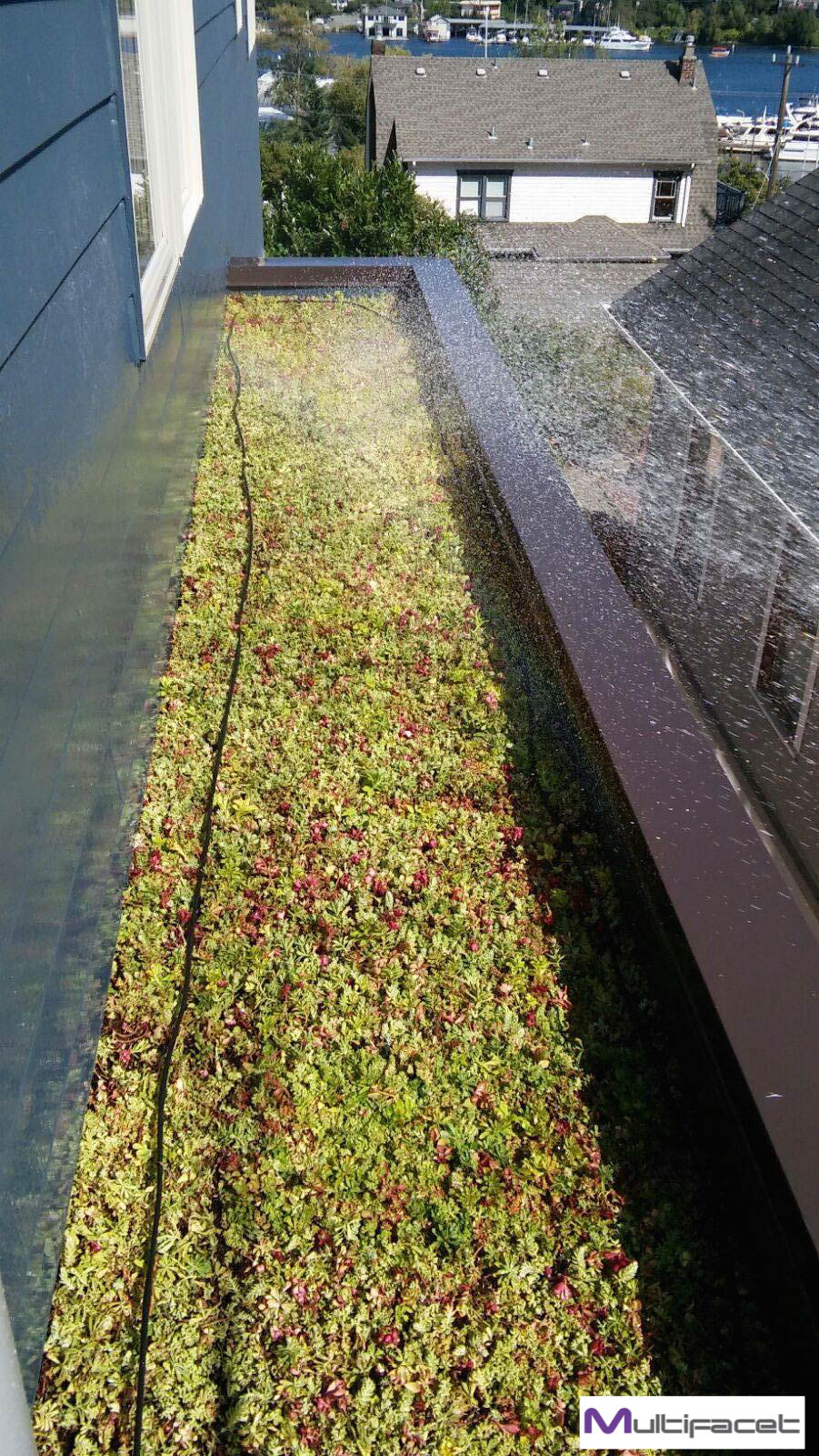 Garden/ Green Roofing Services