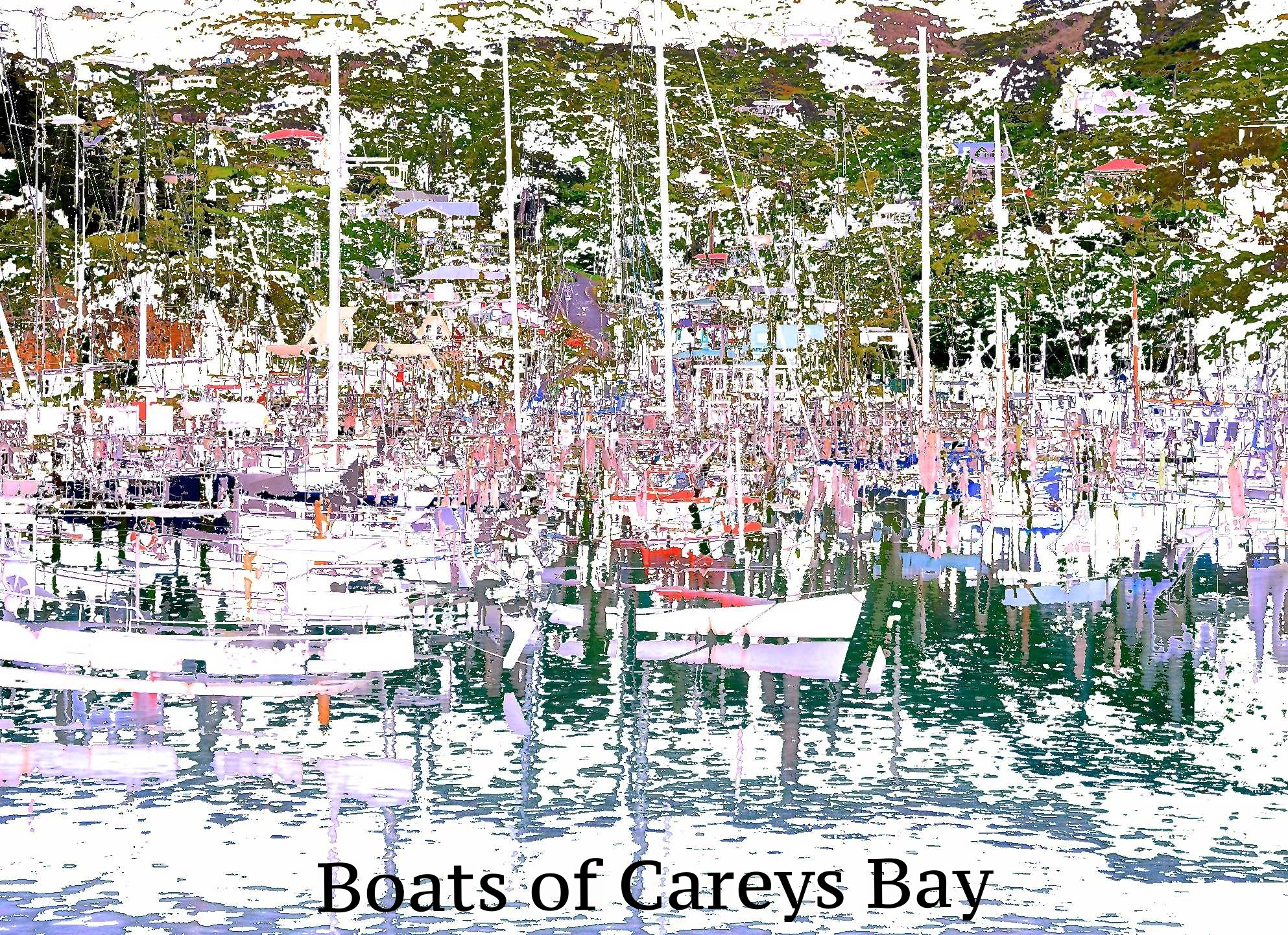 Boats of Careys Bay