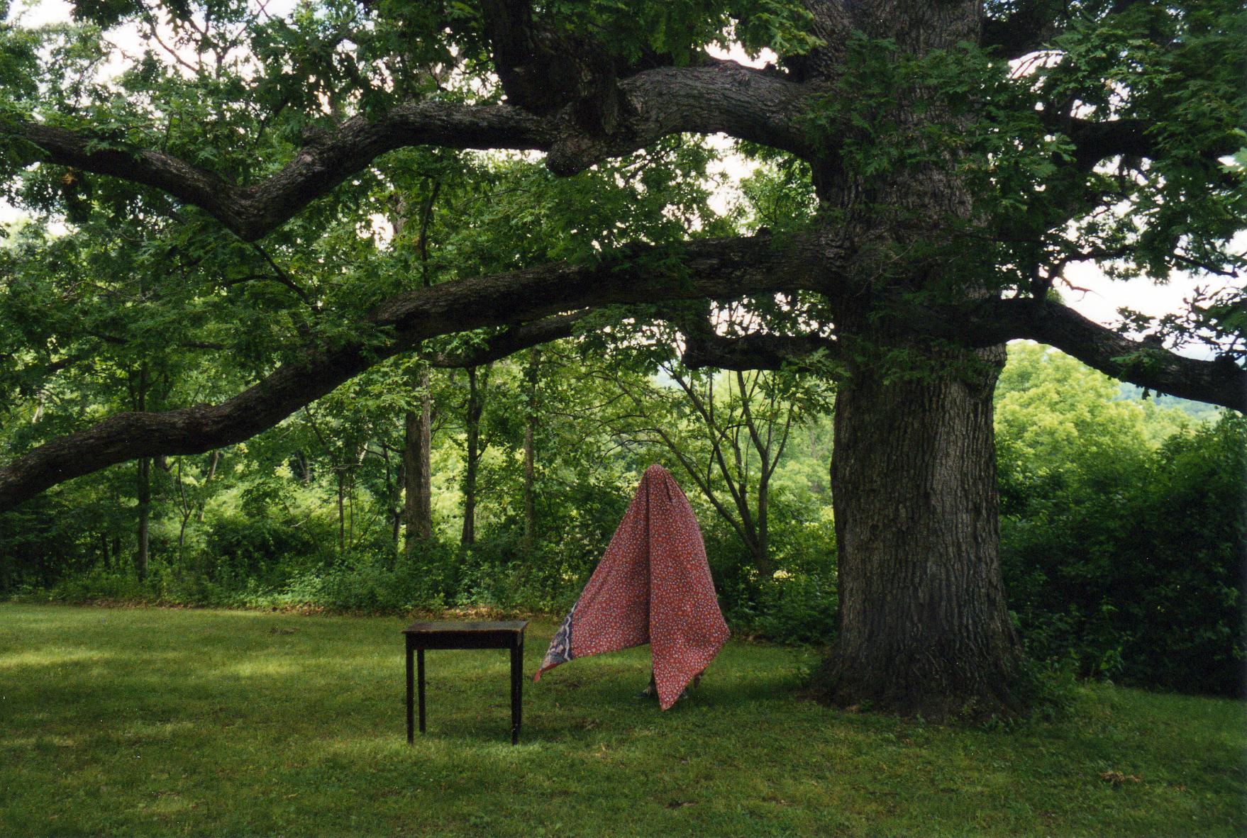 tree_table.jpg