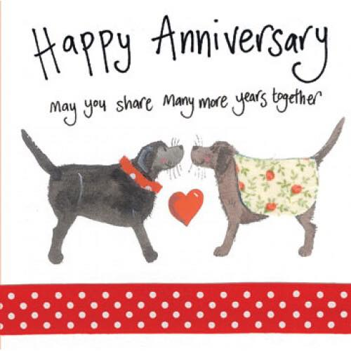 2-year anniversary Back on Track Veterinary Hospital.jpg