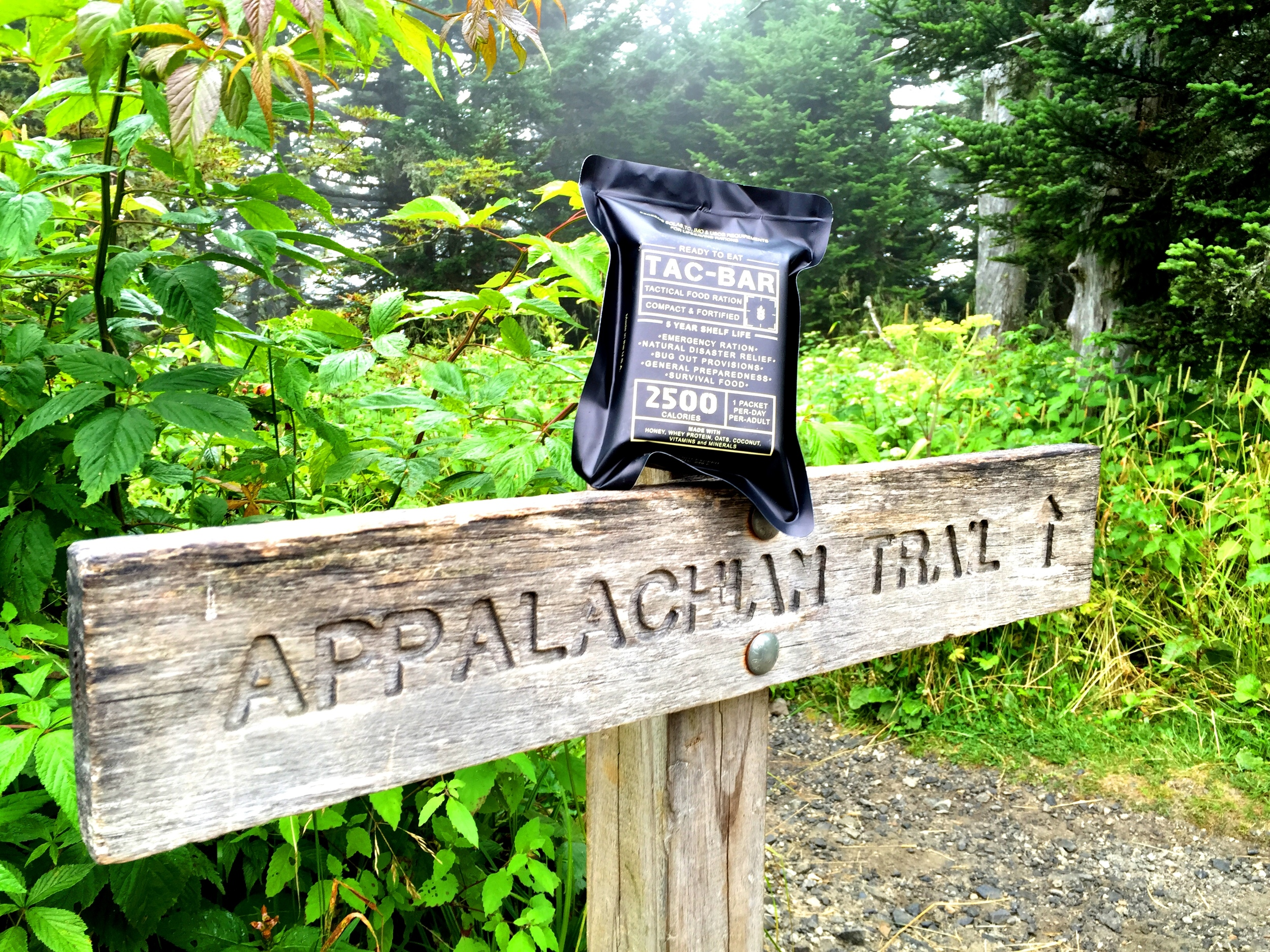 While section hiking the AT in the Summer of 2015, we polished our formula for vitamins and minerals, not just calories.