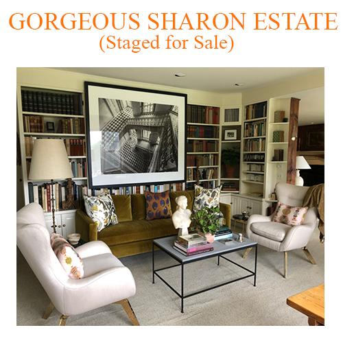 Gorgeous+Sharon+Estate.png