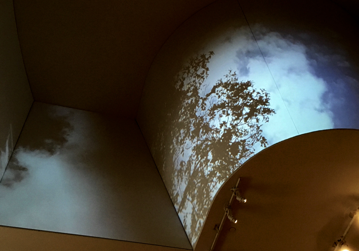 12.Bursts and Whispers (installation view 1).jpg