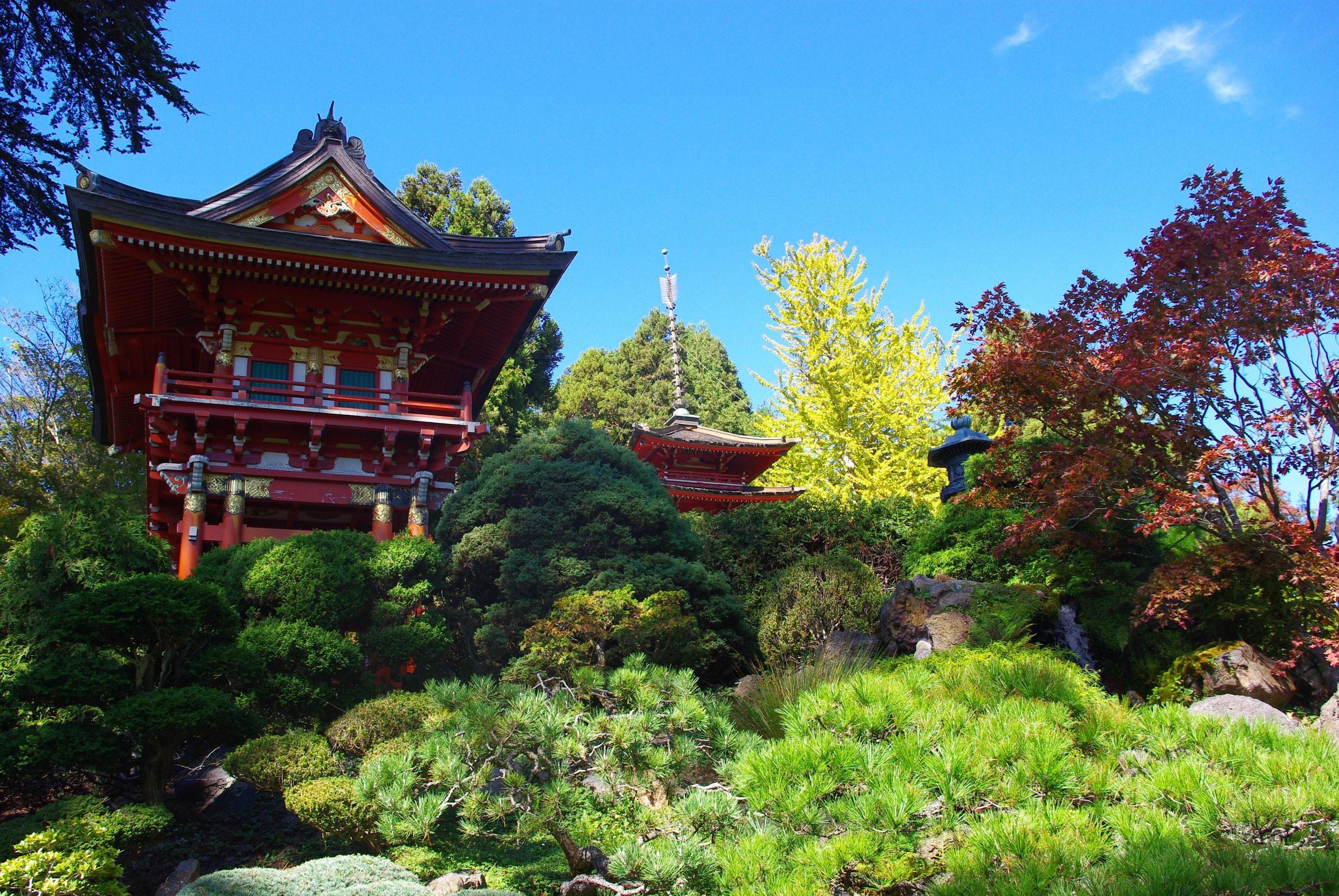 8.Revel at the Japanese Tea Garden