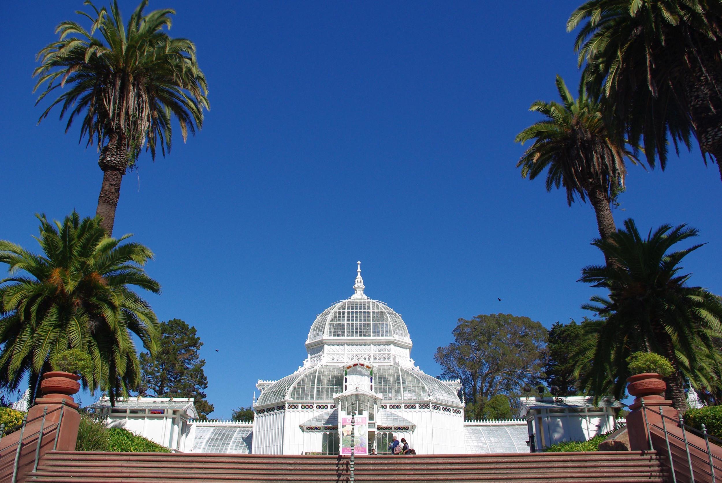 7.Wander through the Golden Gate Park and Botanical Garden