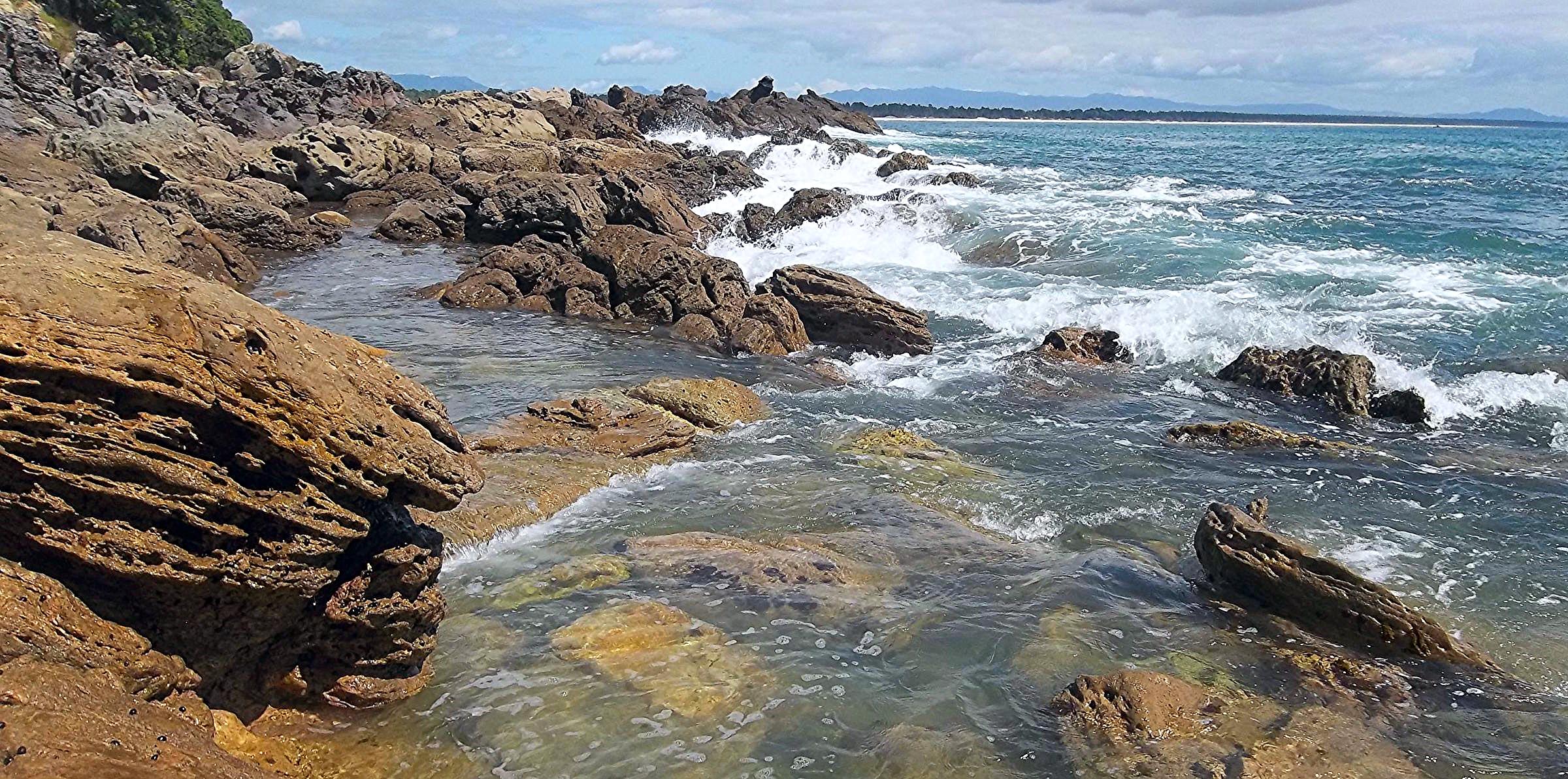 Shell Beach, NZ: Bryan Miller