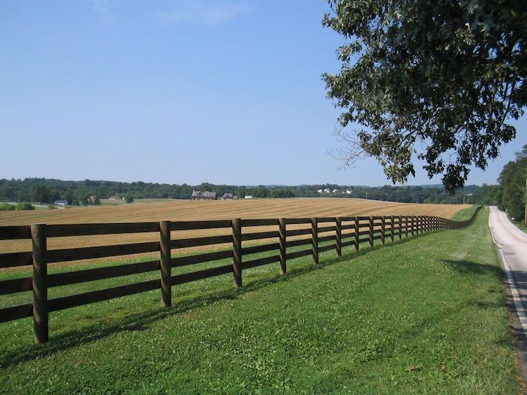 Wikipedia Fence