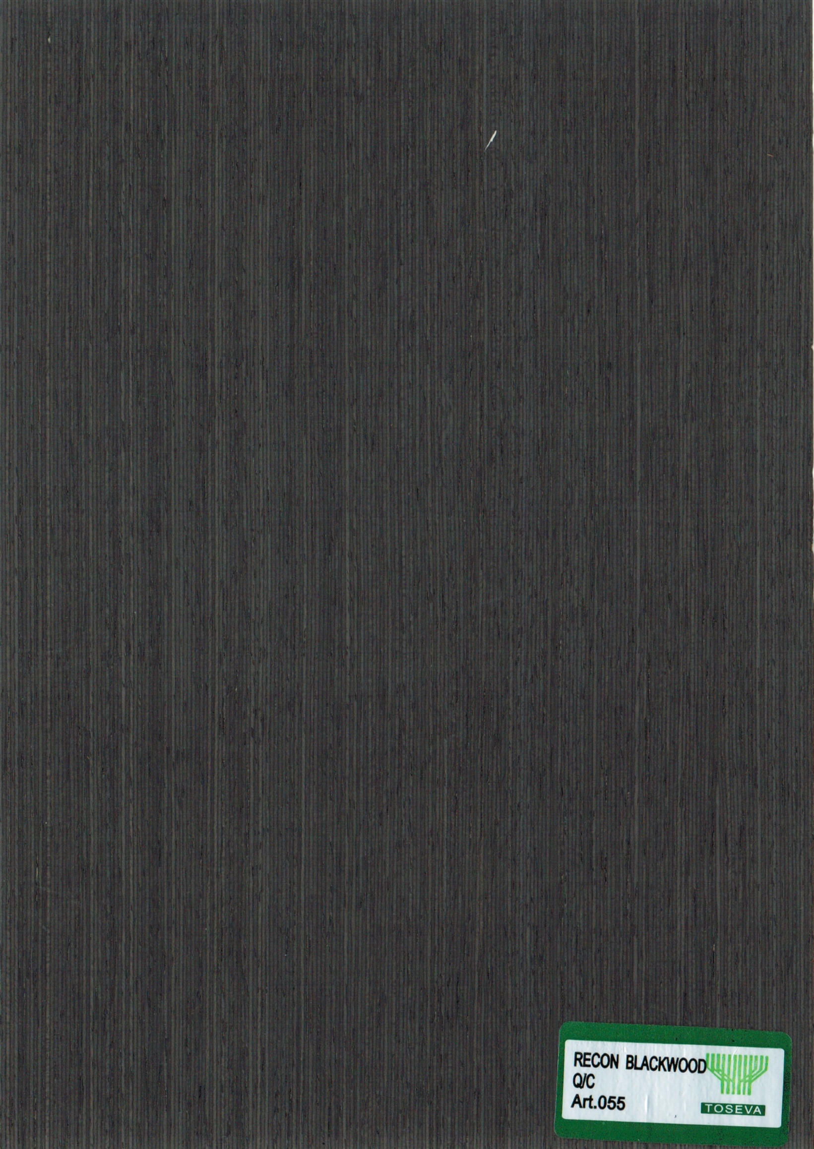 RECON BLACKWOOD Q:C - 055.jpeg