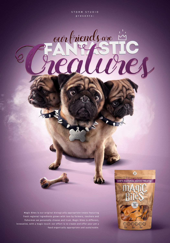 Fantastic-Creatures-1.jpg