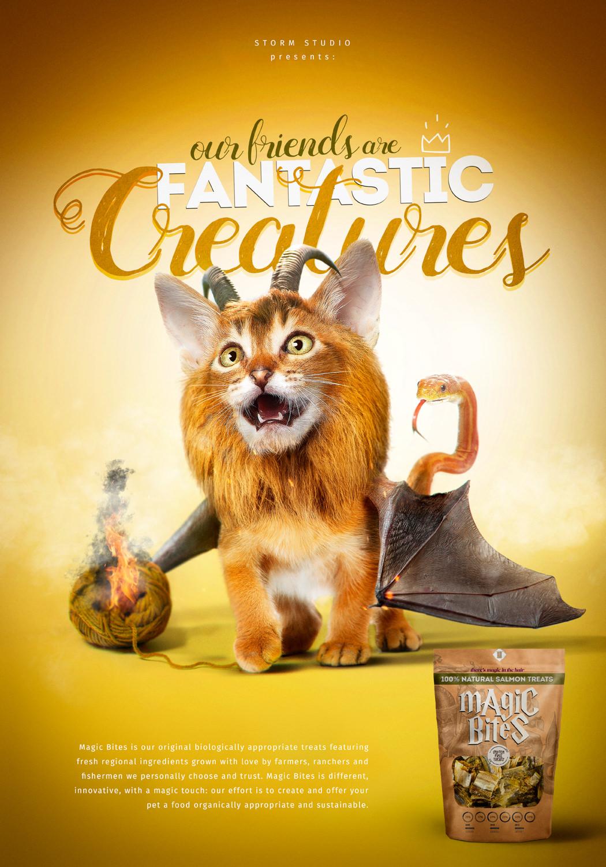 Fantastic-Creatures-2.jpg