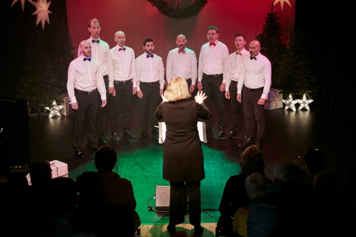 Octet tijdens de Kerstshow 2017 / Octet during the Christmas show 2017