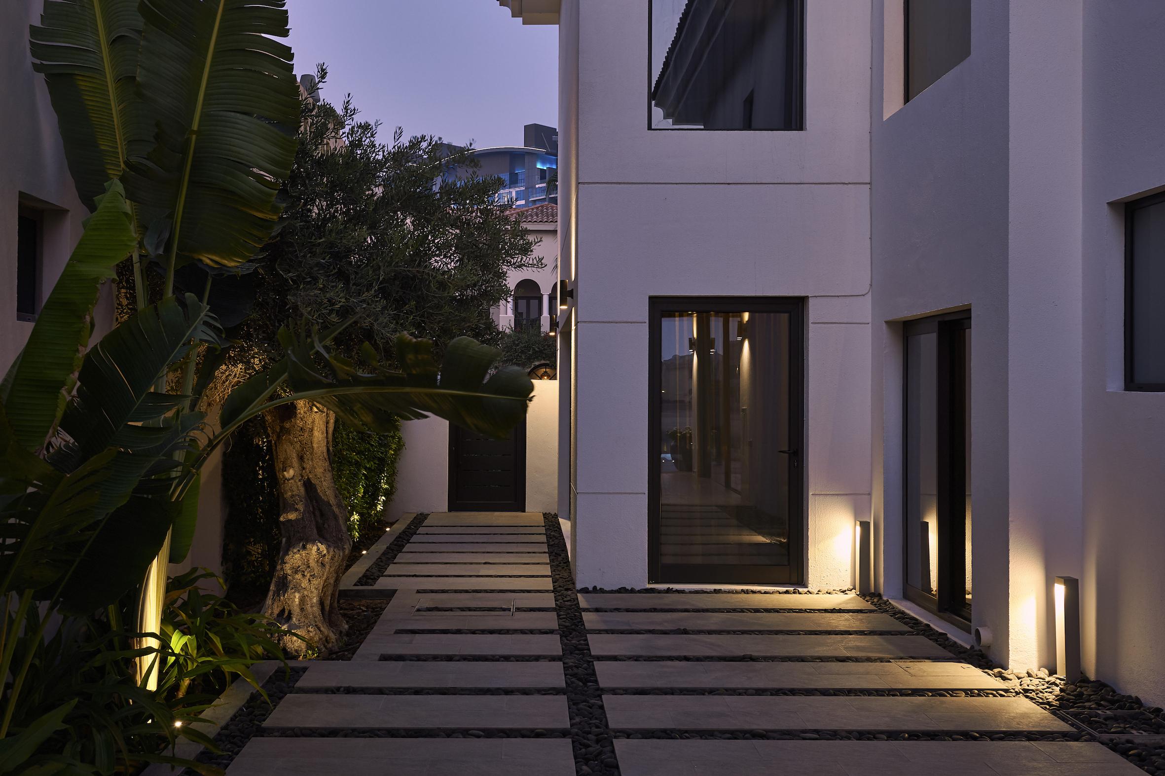 Nader-Gammas-Lighting-Design-Palm-Landscape.JPG