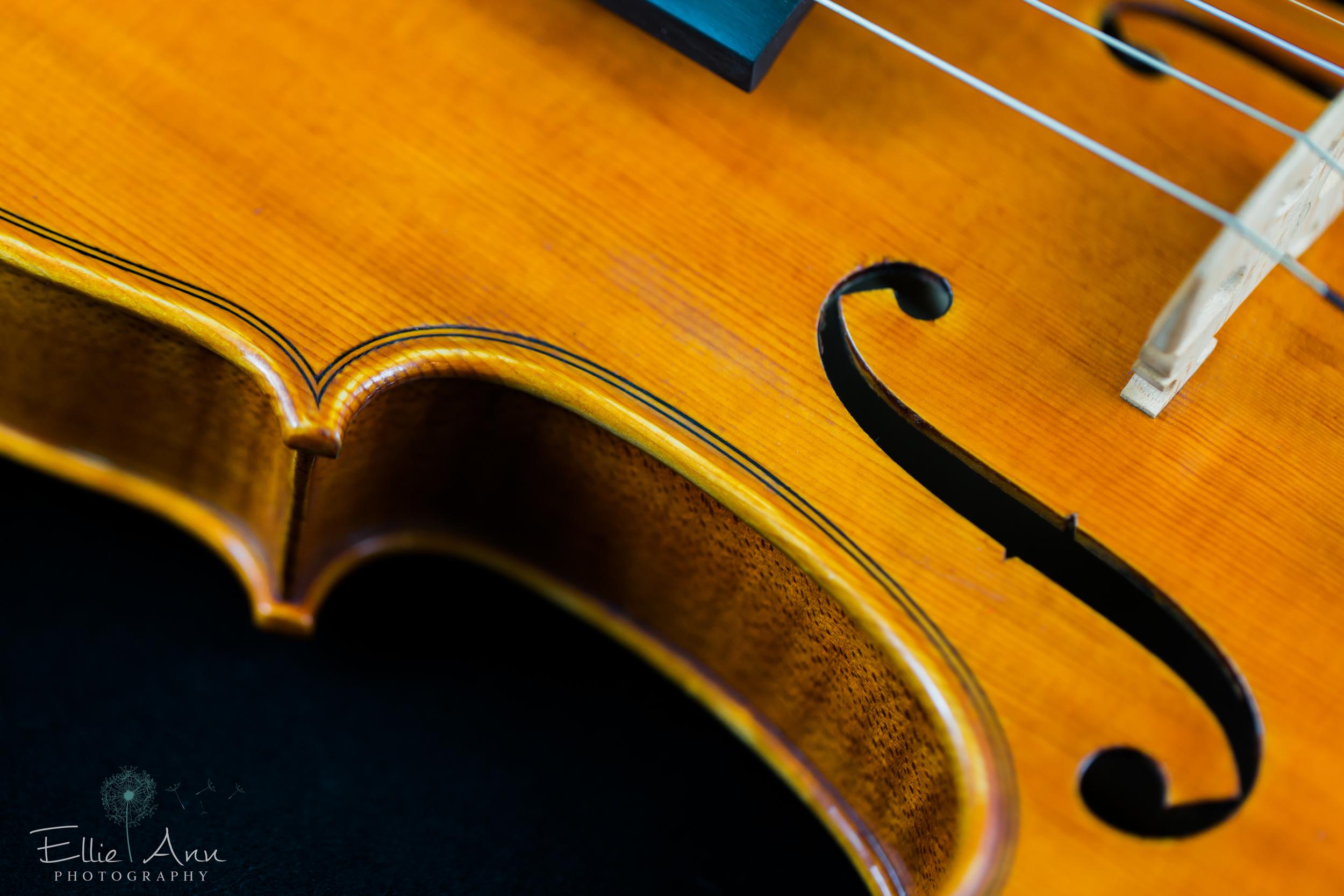 Violin-17.jpg
