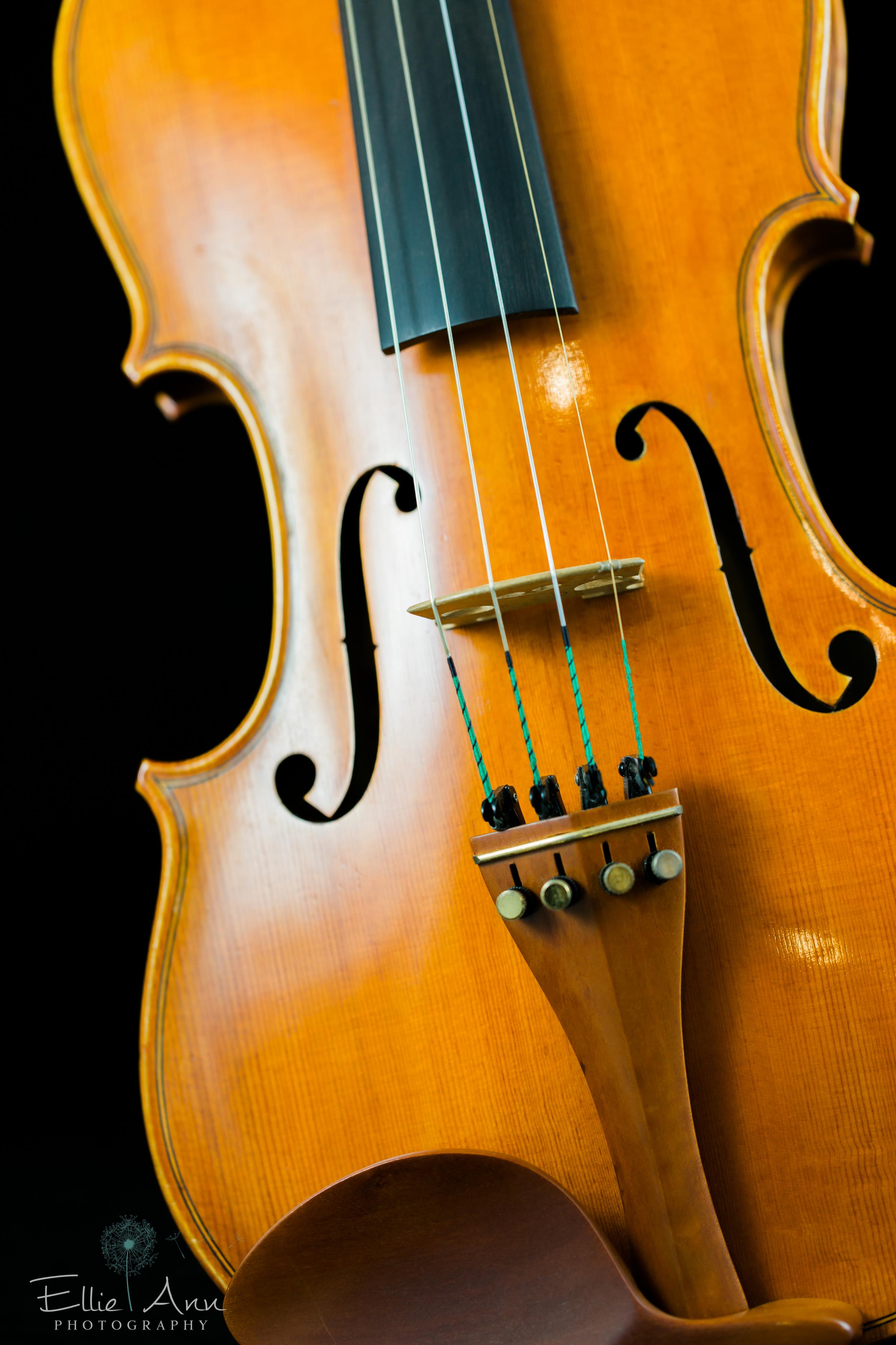 Violin-26.jpg