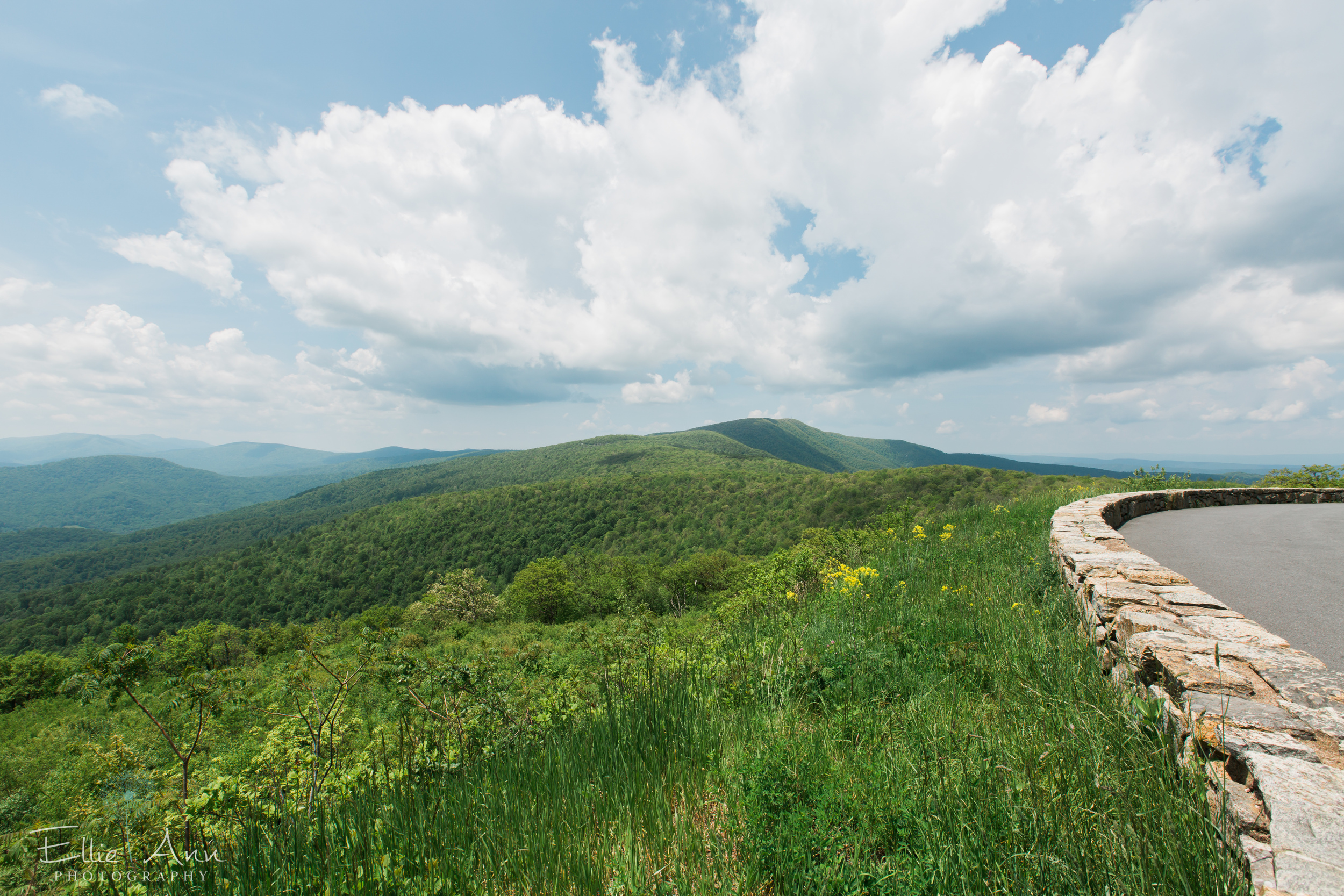 Overlook along Skyline Drive - Shenandoah National Park