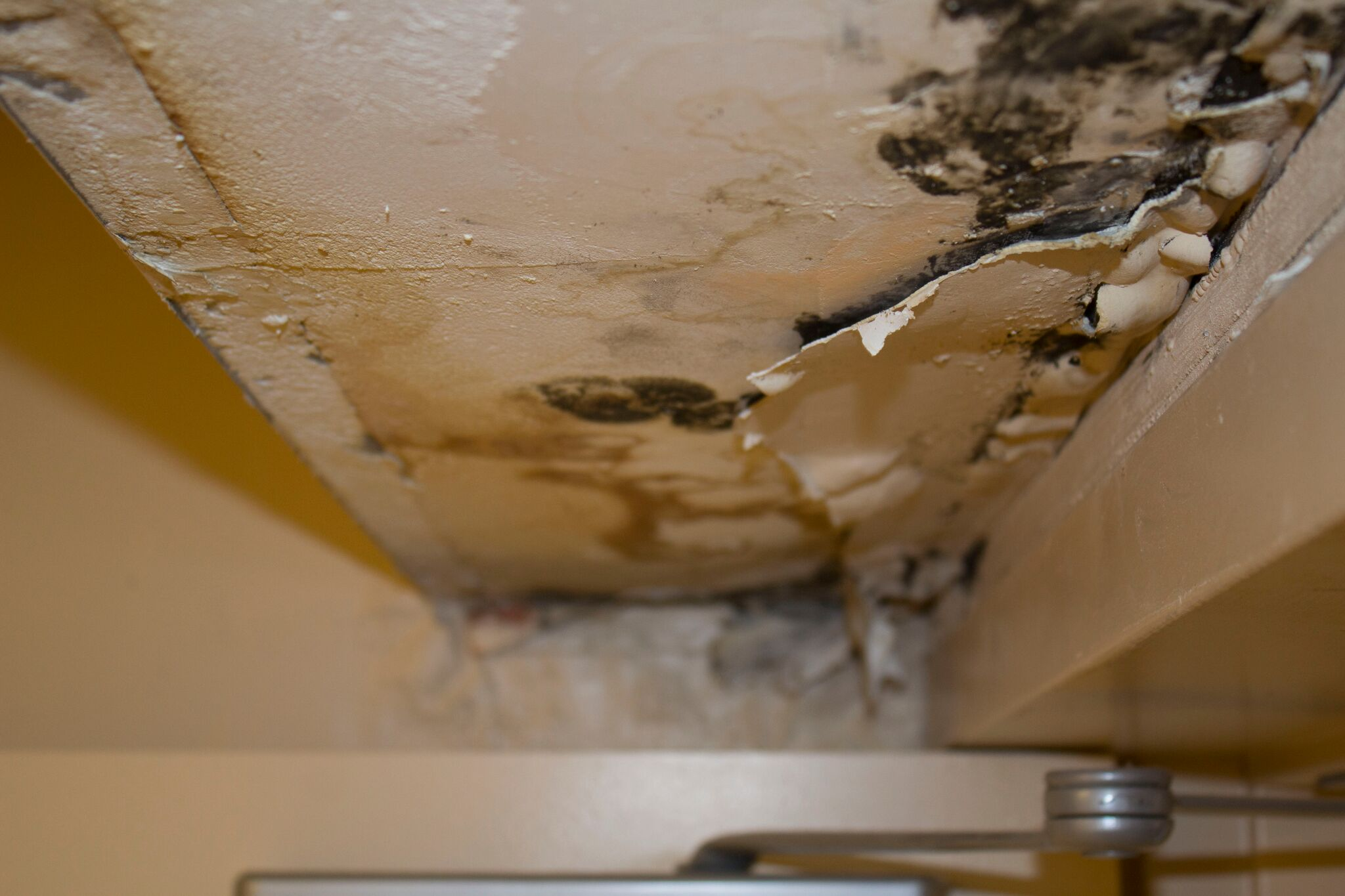 water damage restoration alpharetta