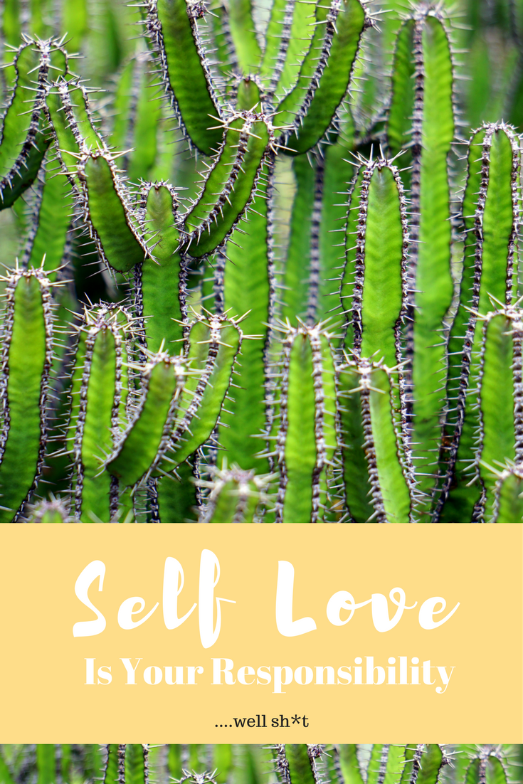 Don't short change your happiness by falling short on showing yourself self-love. Head over and see what I'm chatting about on the blog at www.theonyxfeather.com/blog