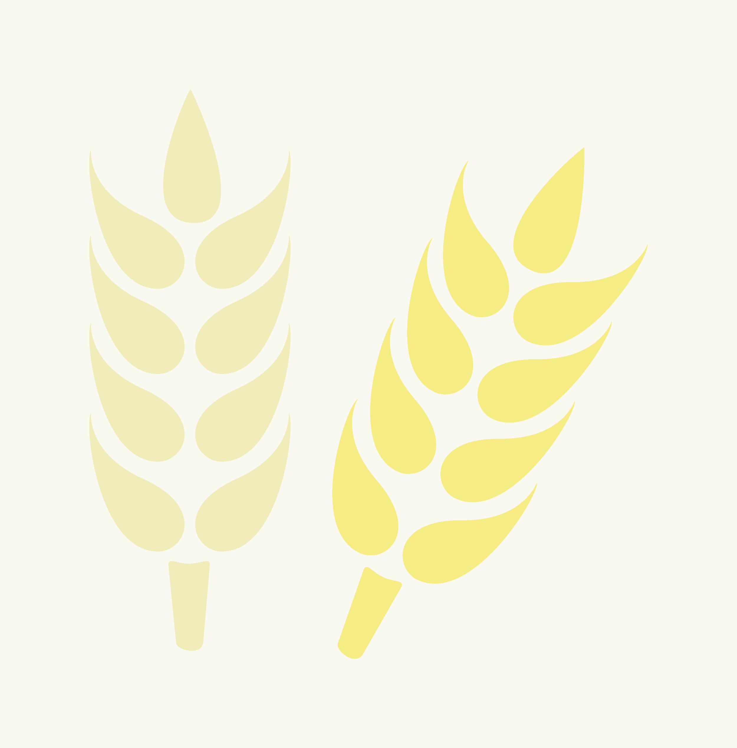 De topsector Agri en Food stimuleert ontwikkeling van kennis en innovatie op het gebied van voeding