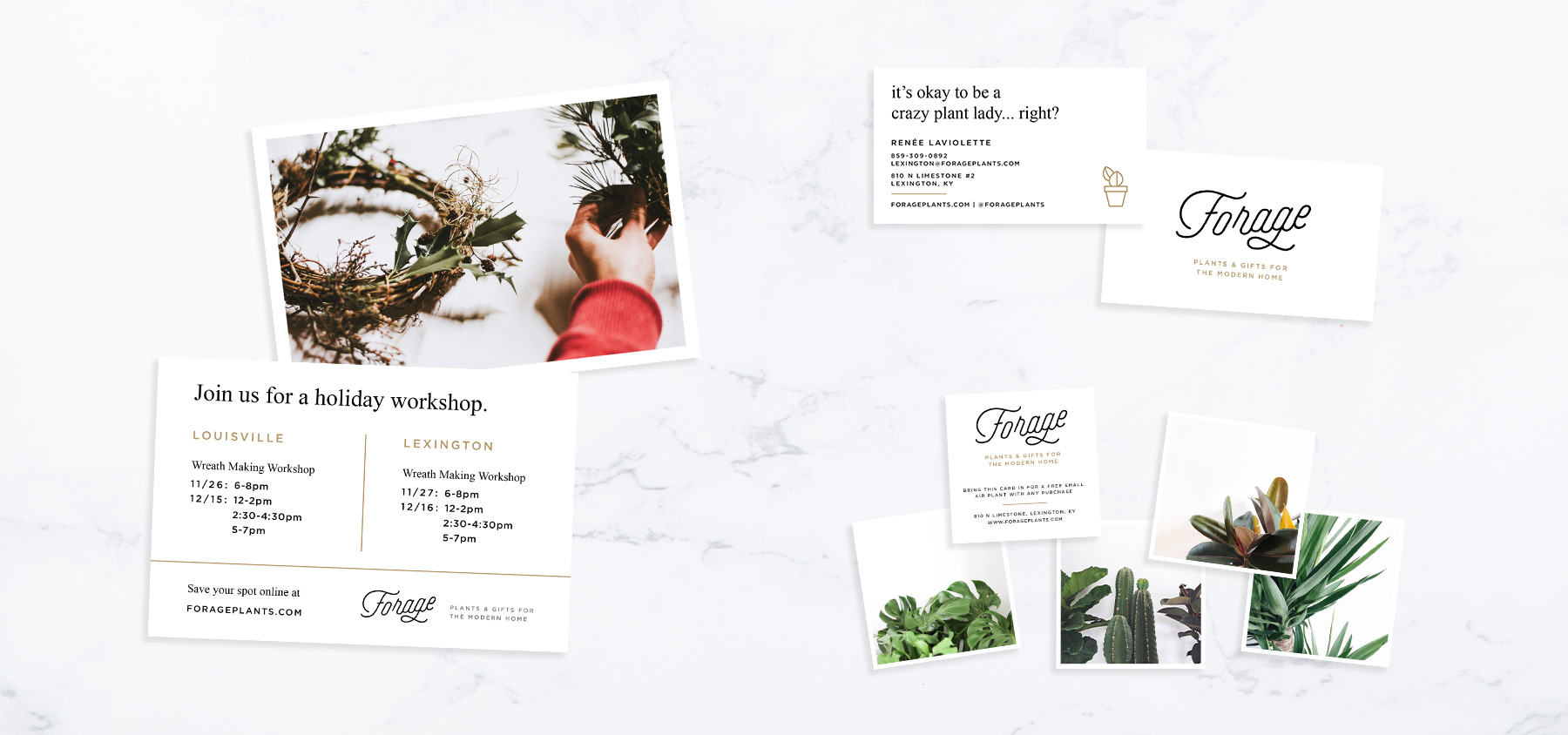 forage-cards.jpg