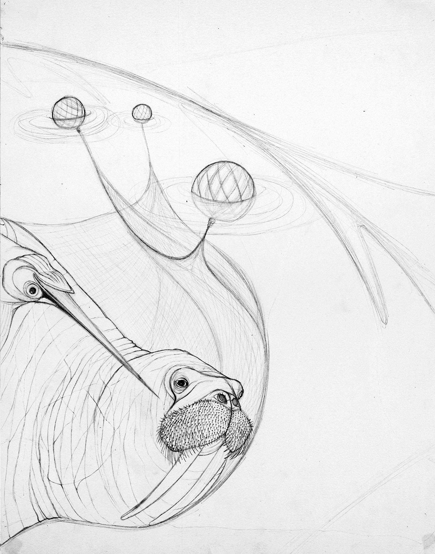 walrus_cargo_dk_o.jpg