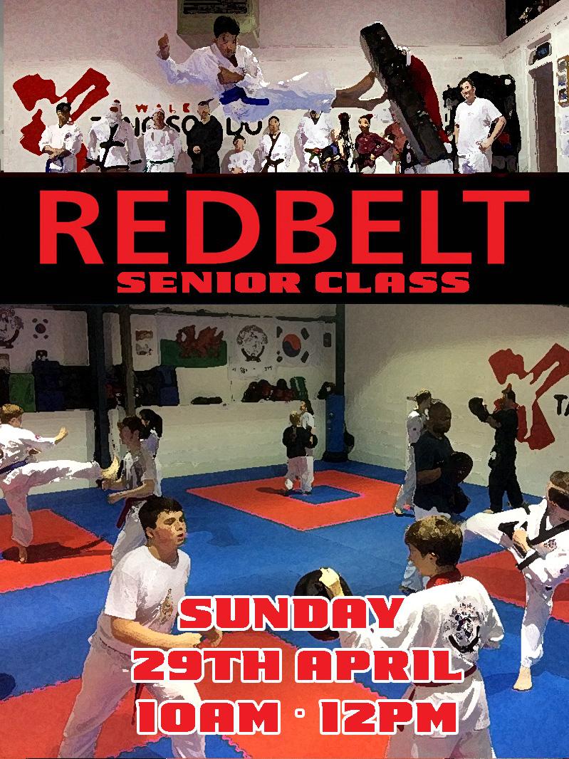 red belt class no 3.jpg