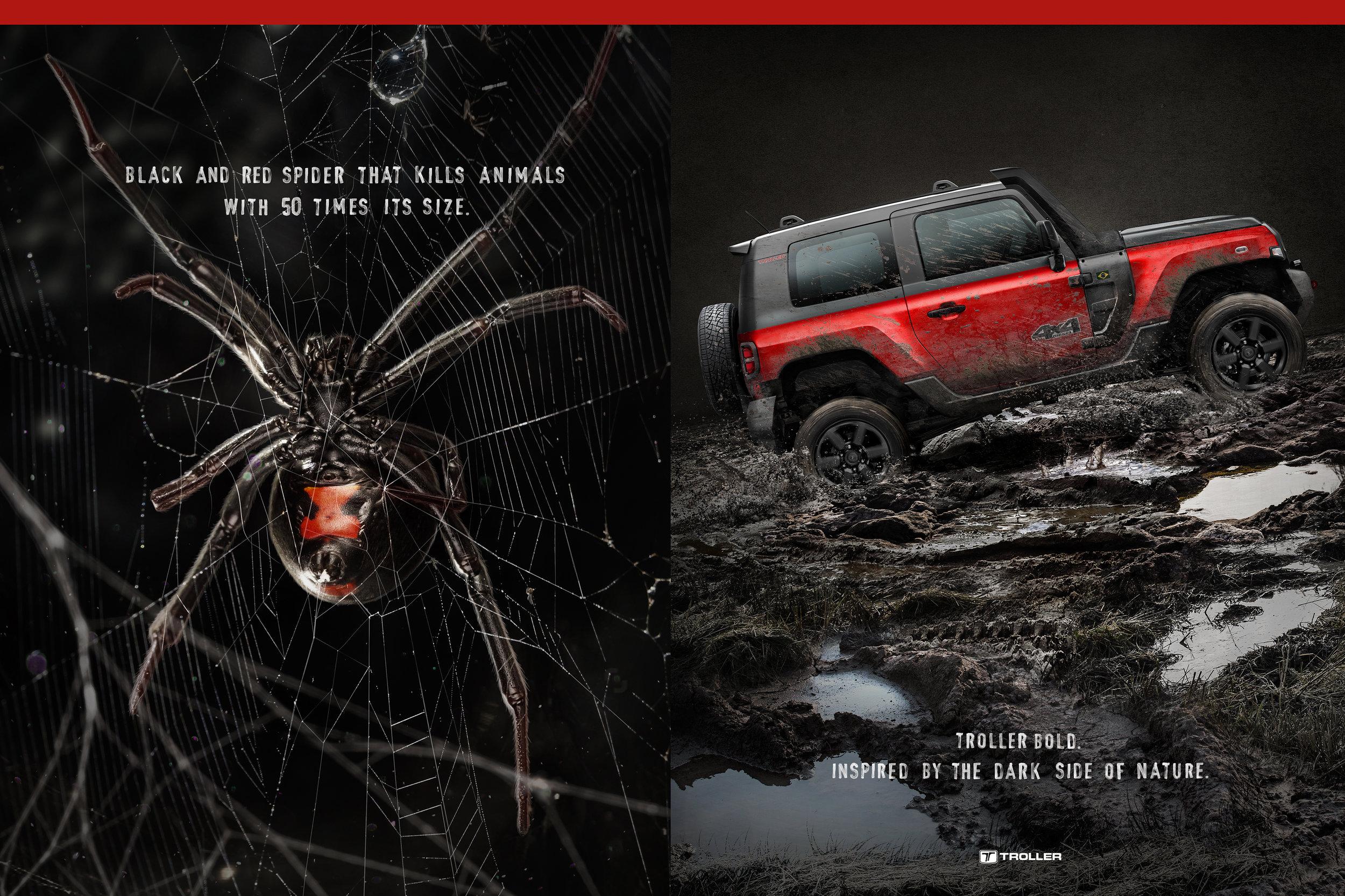 montagem aranha.jpg