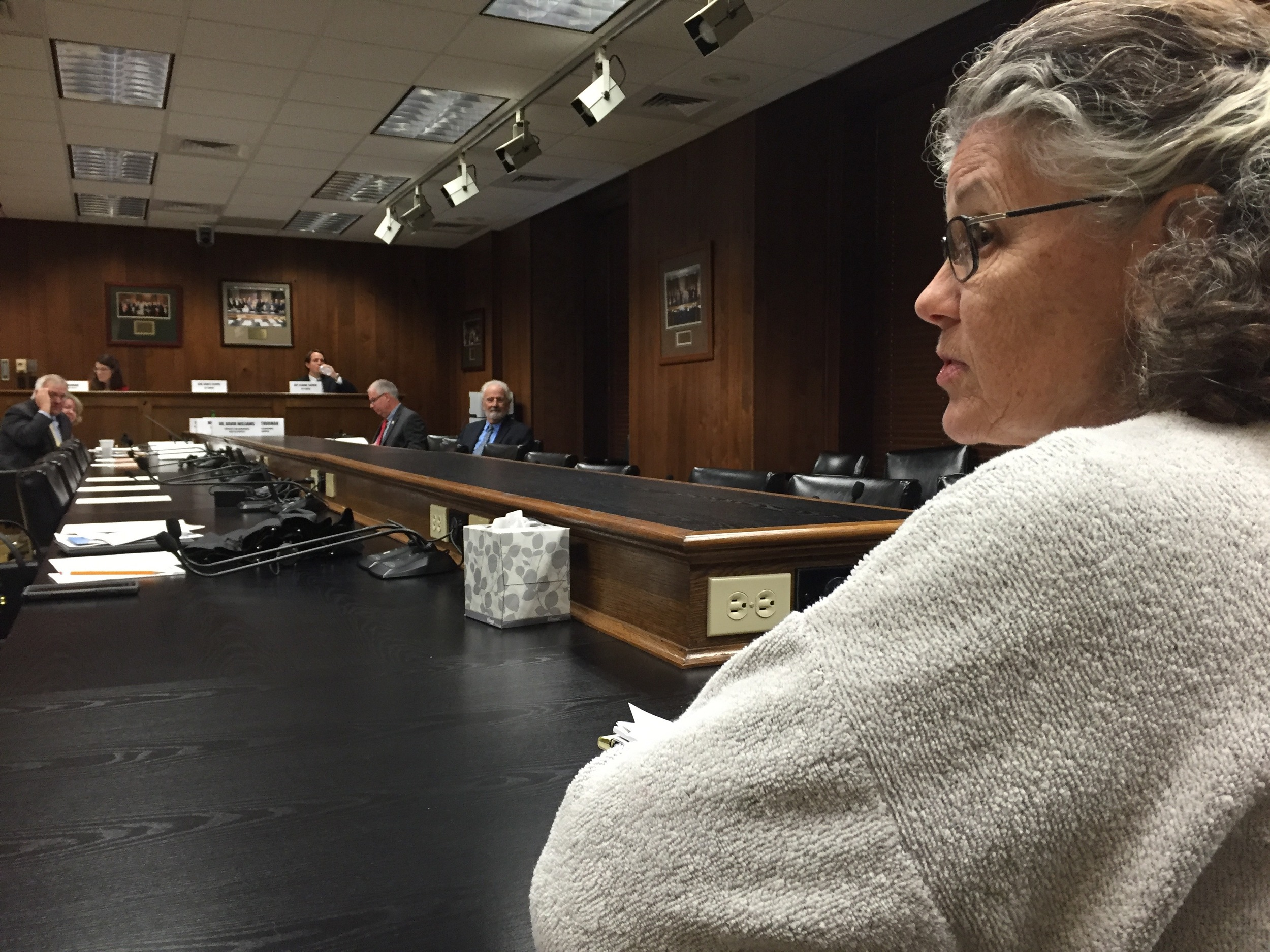 Nancy Kahanak tells the the Task Force on Behavioral Health that Arkansas can use mental health crisis centers to provide better treatment to people with mental illness at a fraction of the cost of incarceration.