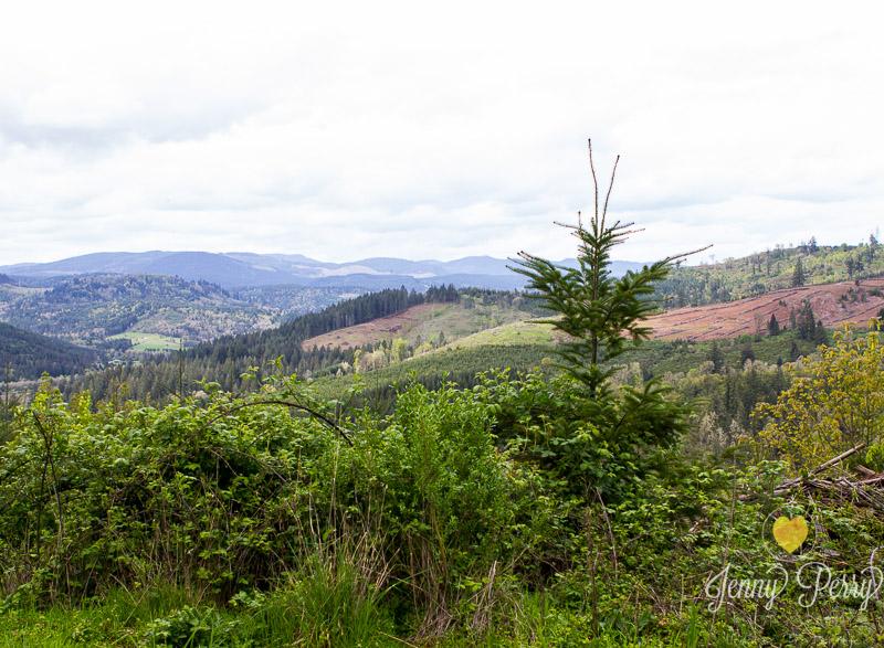JennyPerryPhotography-OregonGirlsTripforWeb-24.jpg