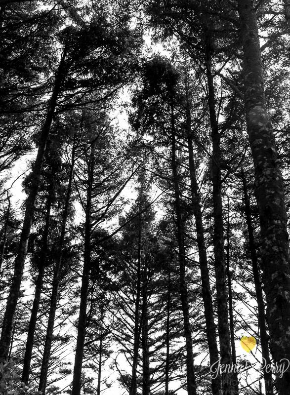 JennyPerryPhotography-OregonGirlsTripforWeb-65.jpg