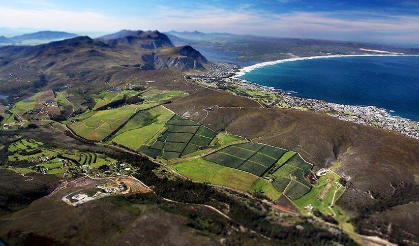 A South African Wine Safari - December, 2017