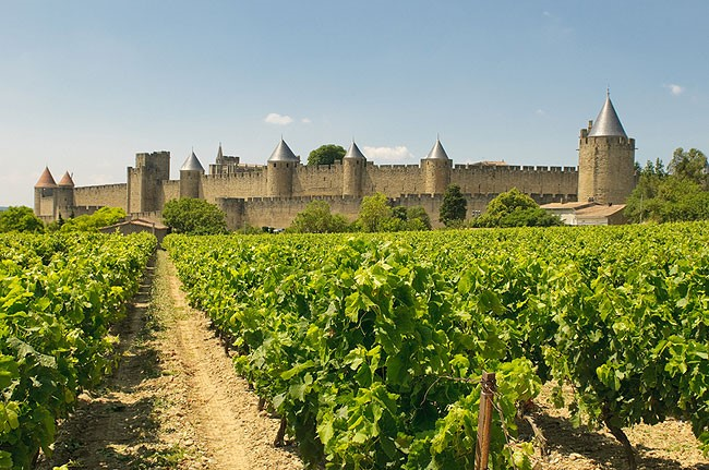 Great Wines of theLanguedoc-Roussillon - August, 2017