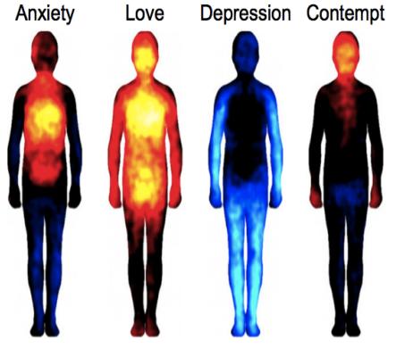 Image from  PNAS study
