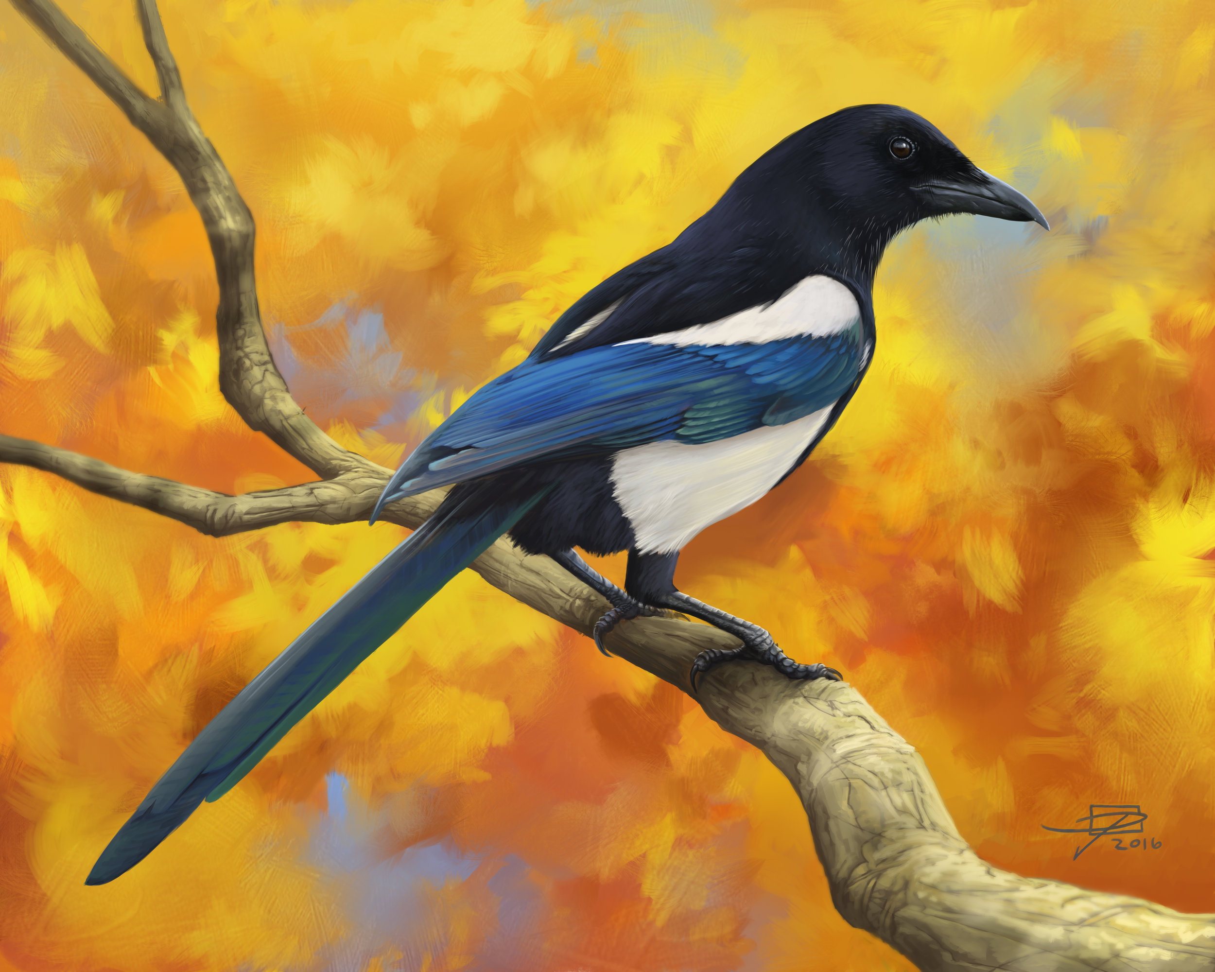 Autumn Magpie