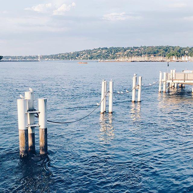 City summers and lake views ☀️