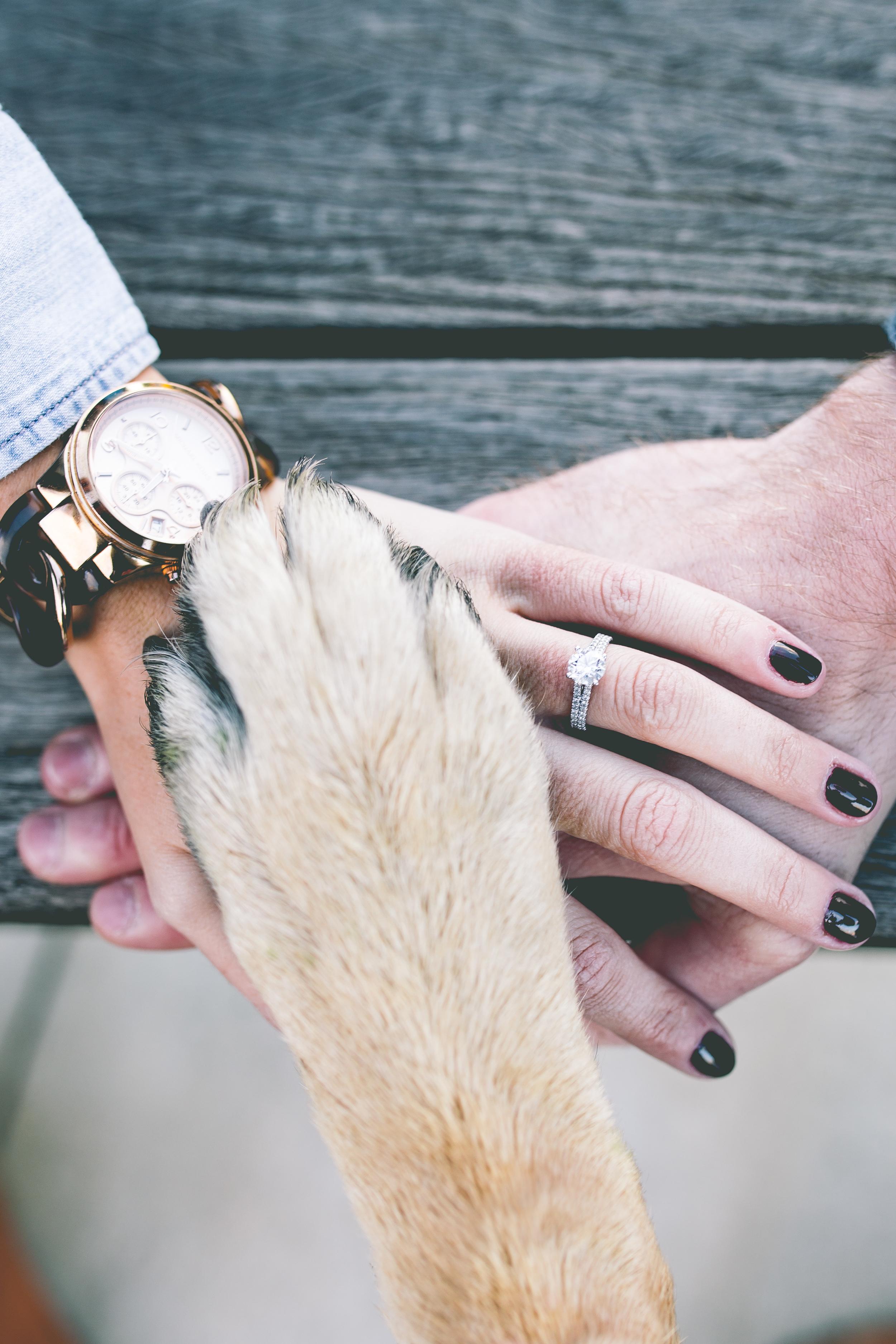 Carolyn_Josh_Federal_Hill_Engagement-57.jpg
