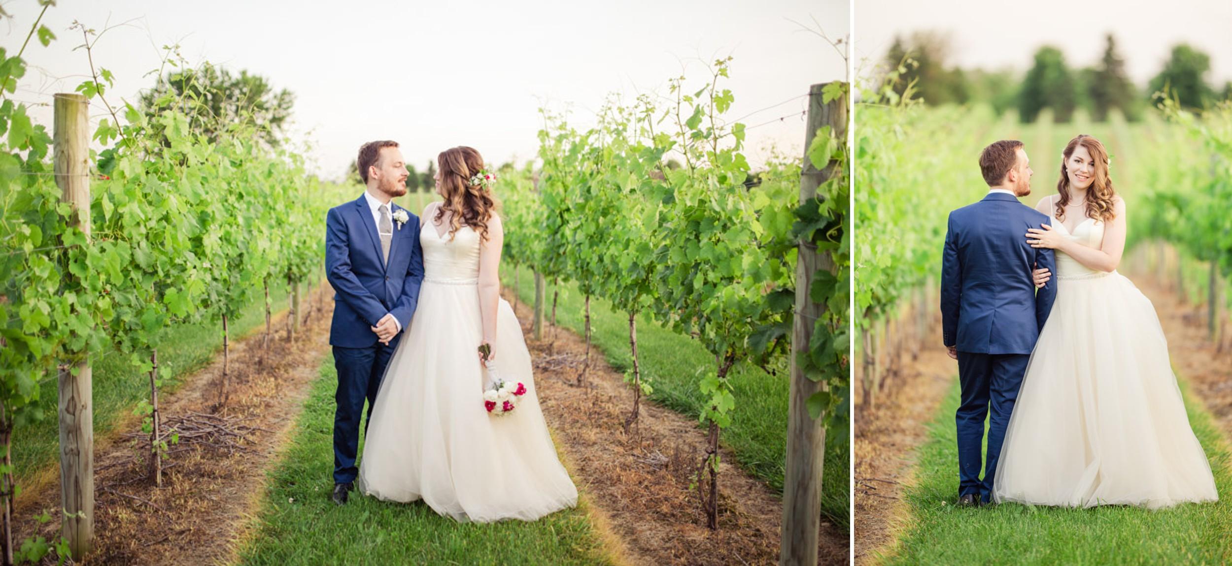 Vineyard Sunset Wedding
