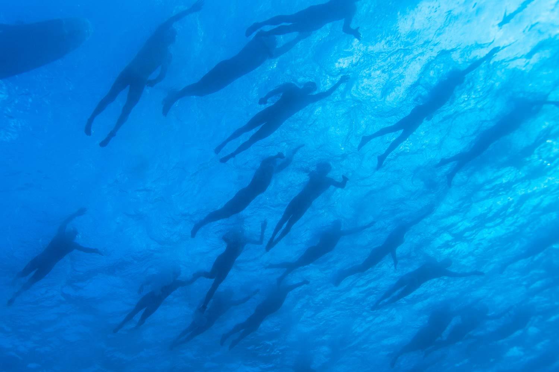 underwater--023.jpg