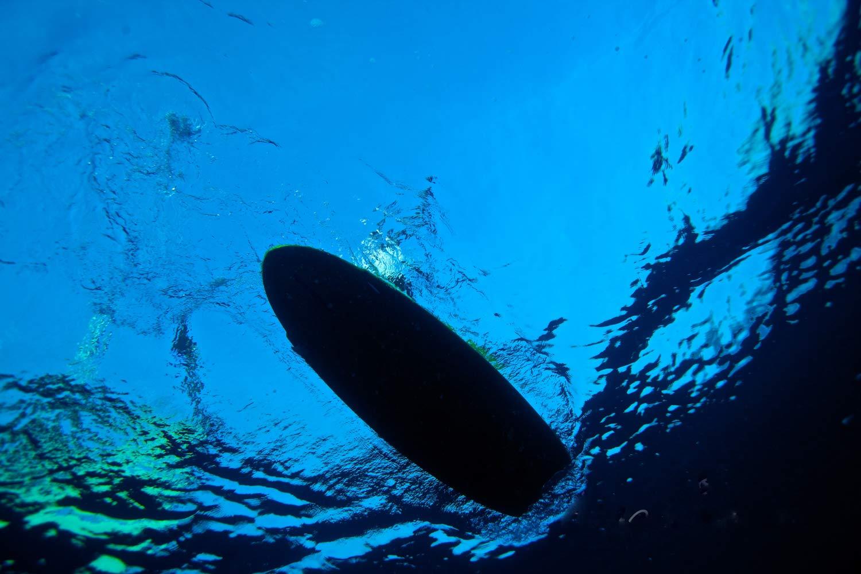 underwater--025.jpg