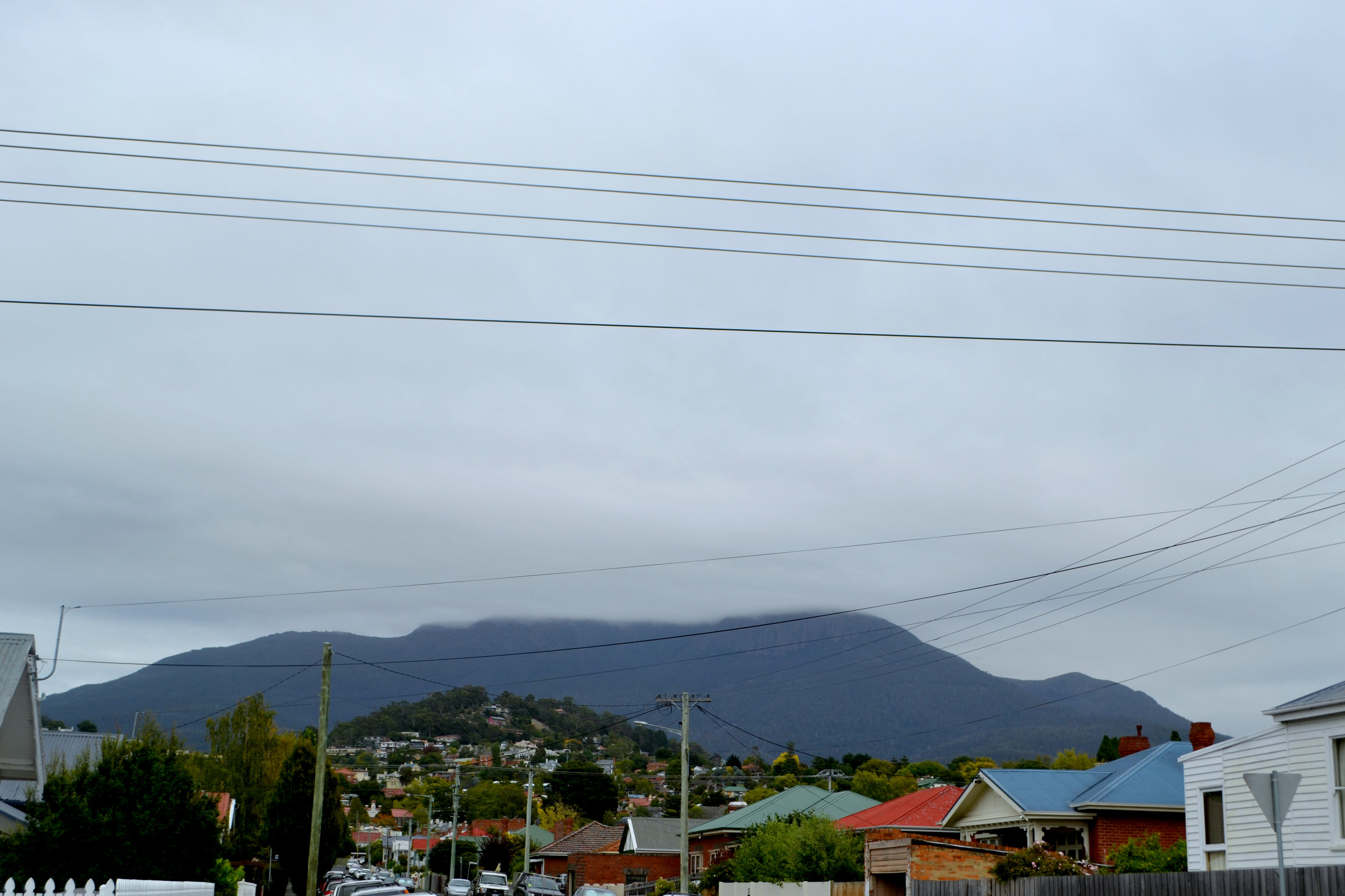 Mt Wellington 13.jpg