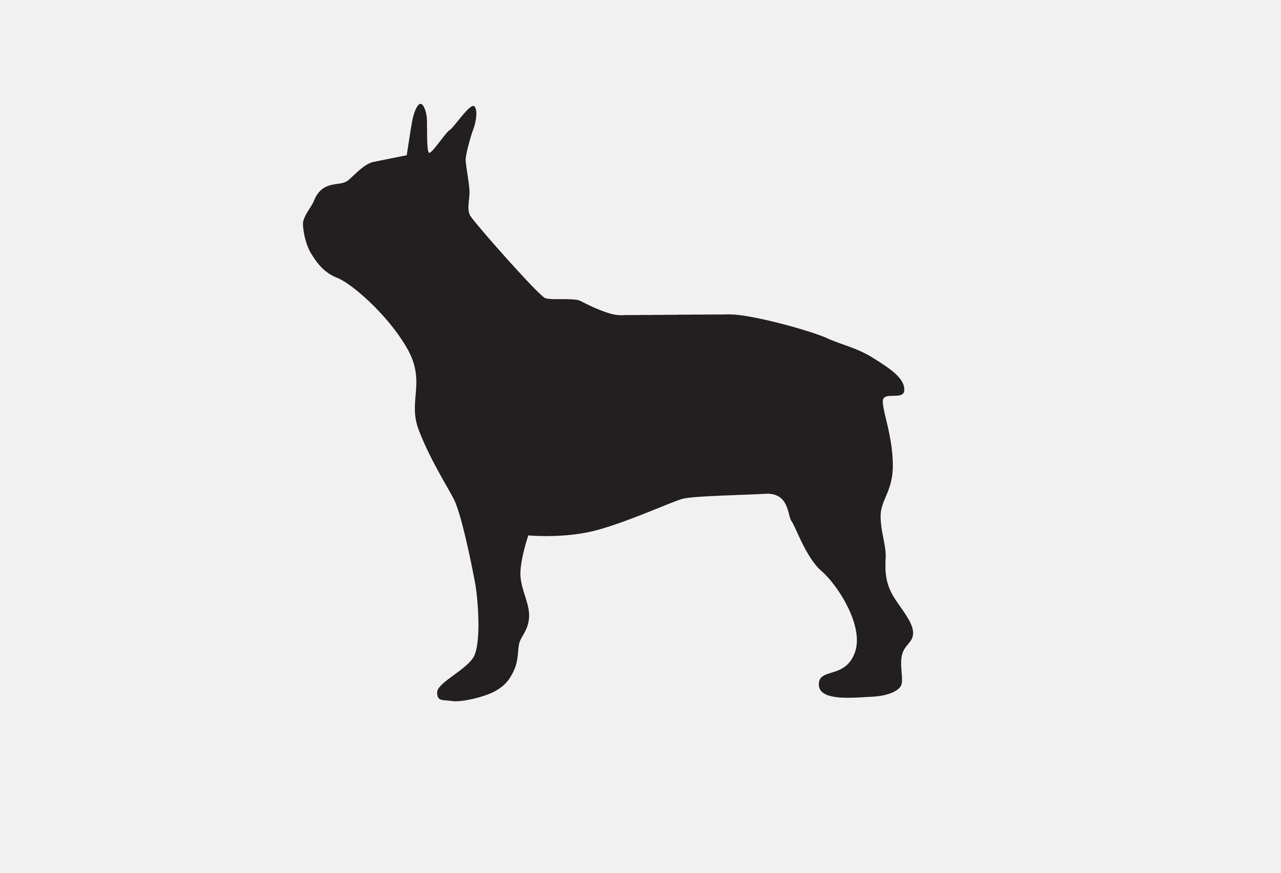 Mascot Images of Project dog.jpg