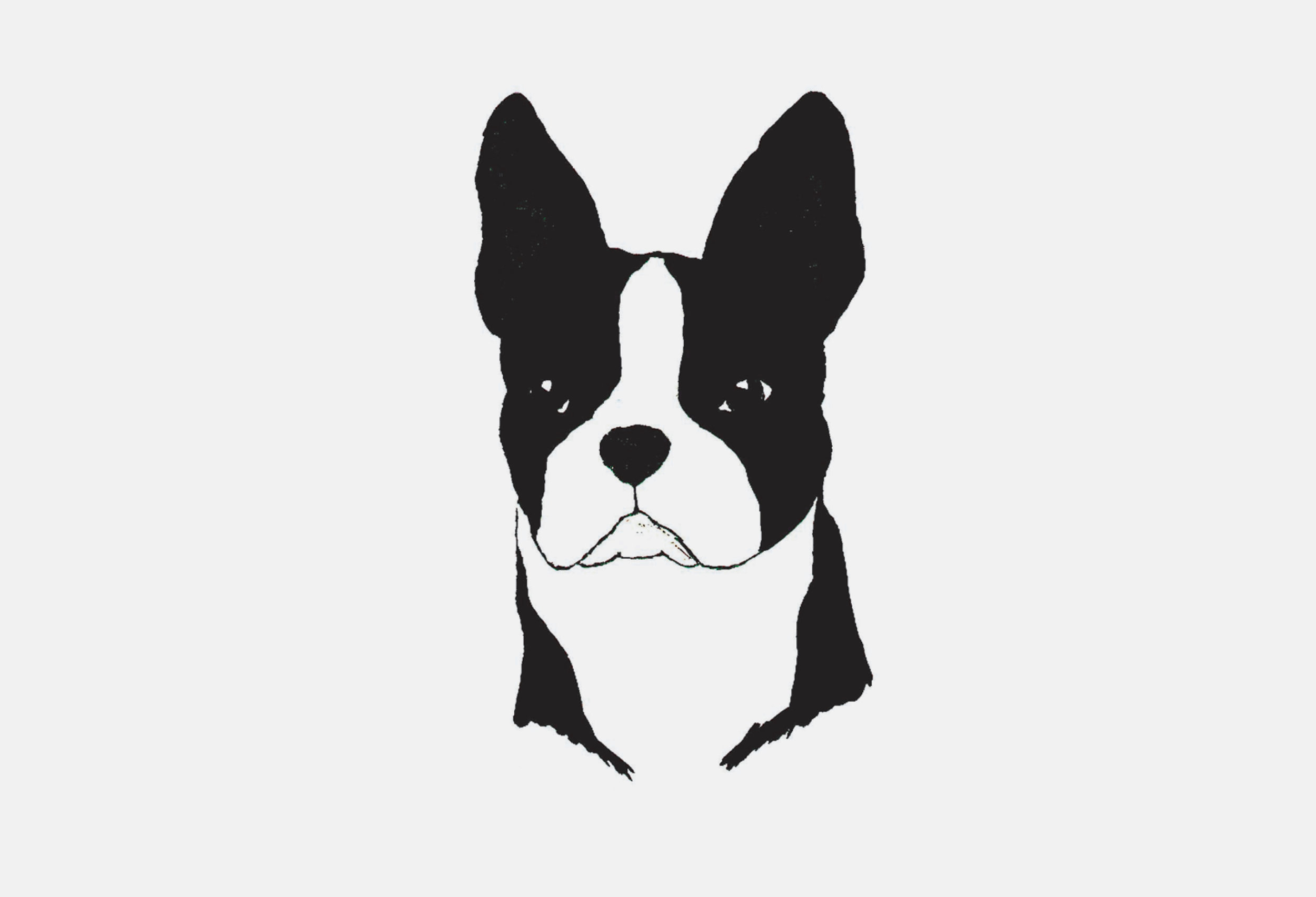 Mascot Images of Project dog3.jpg