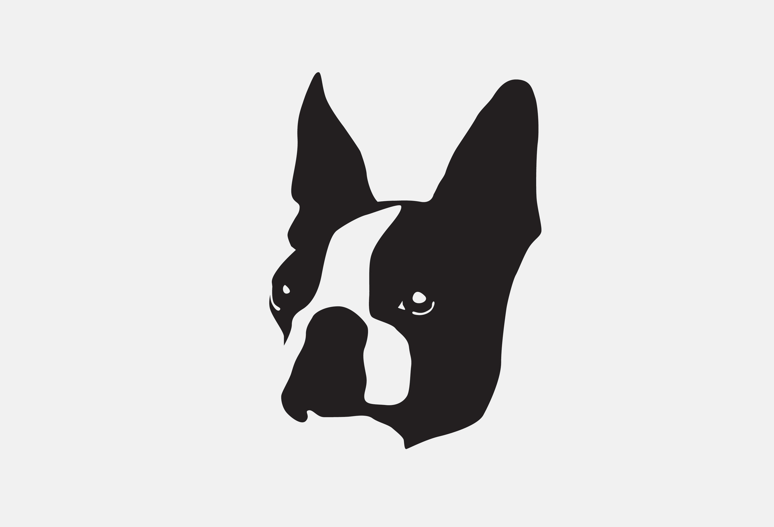 Mascot Images of Project dog4.jpg