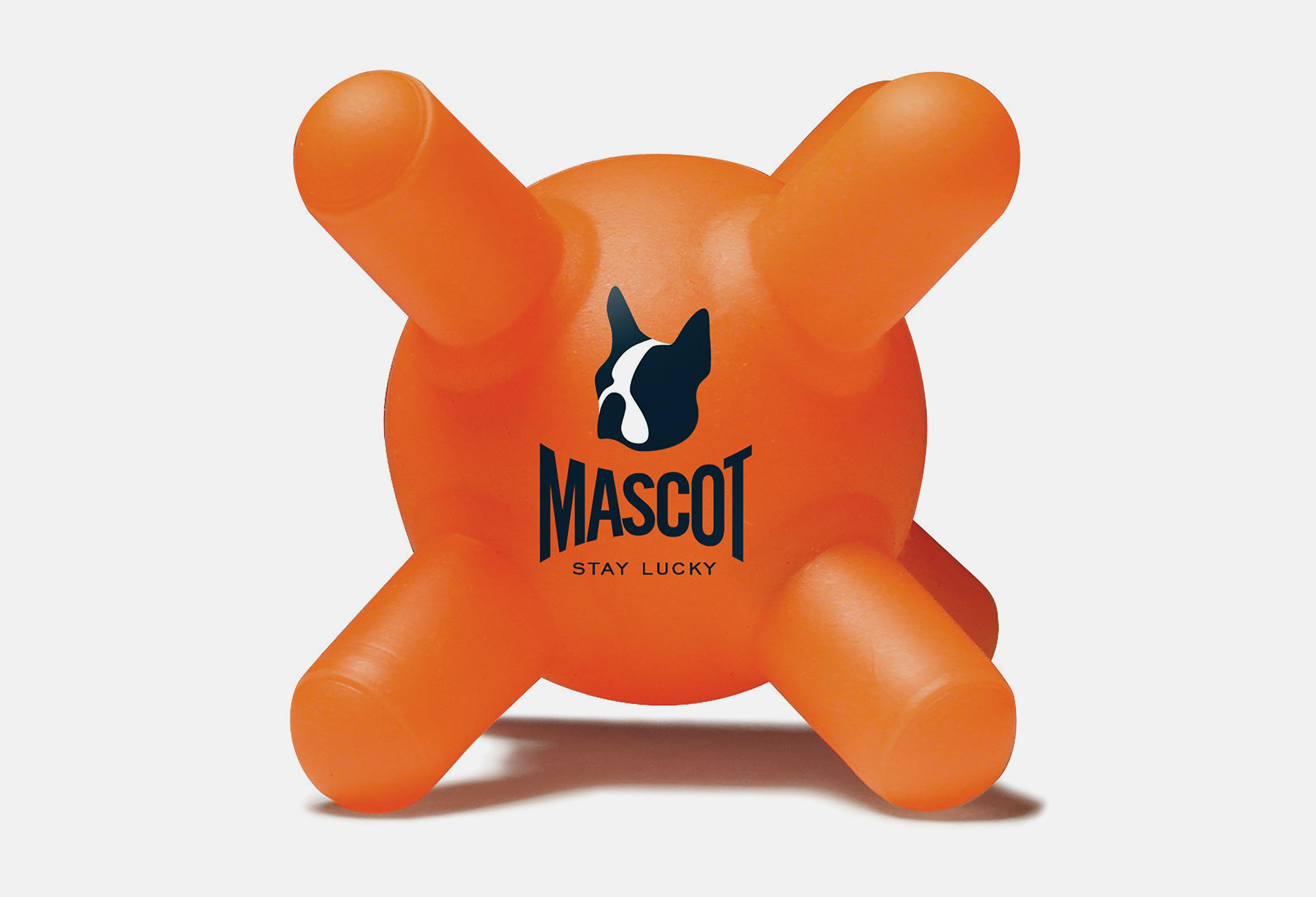 Mascot Images of Project orange.jpg