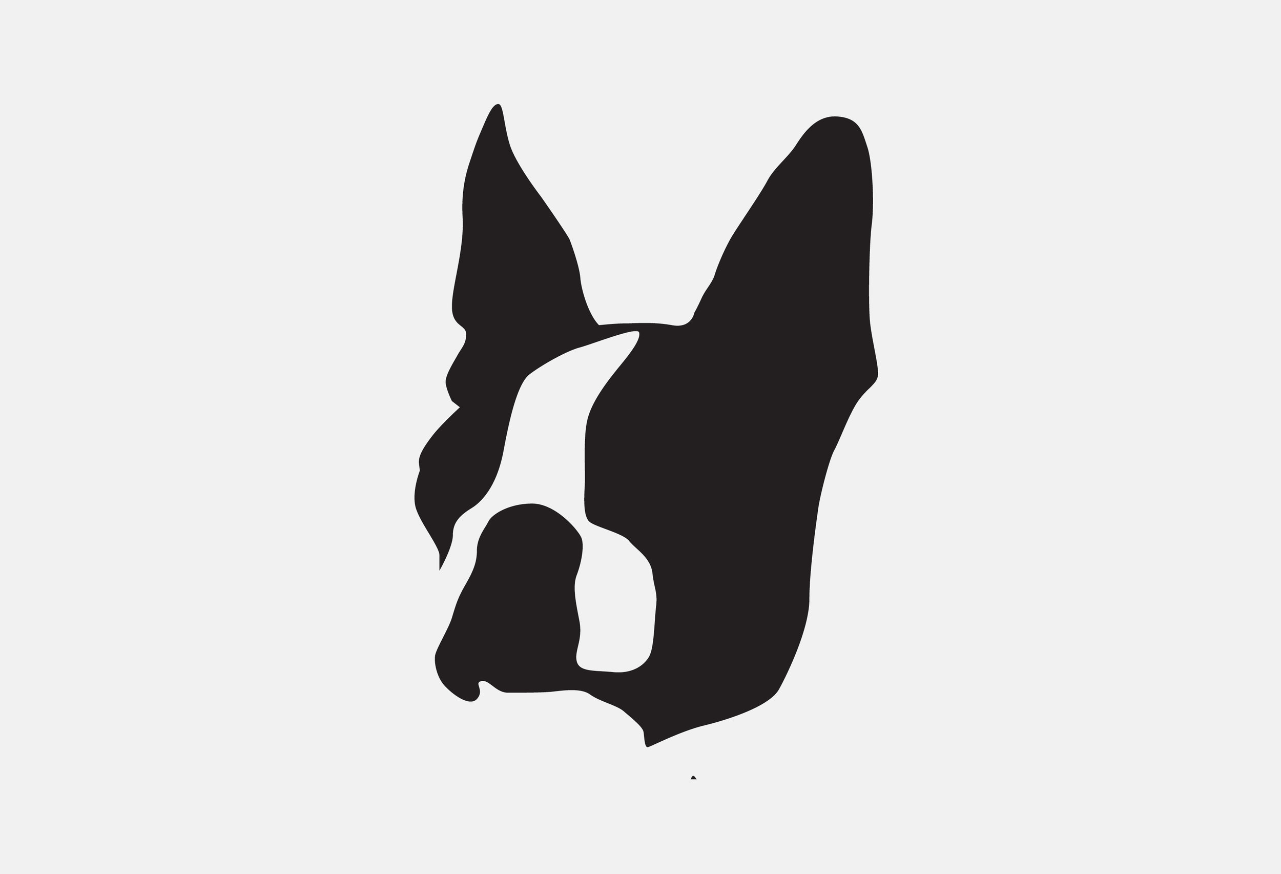 Mascot Images of Project dog8.jpg