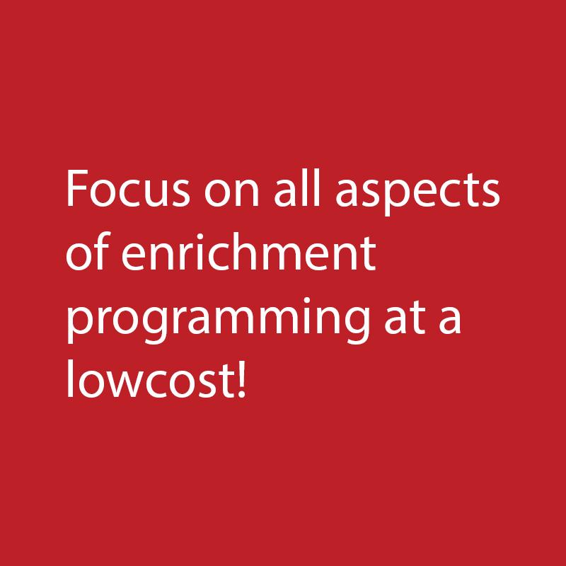 8_EnrichmentProgramming.jpg